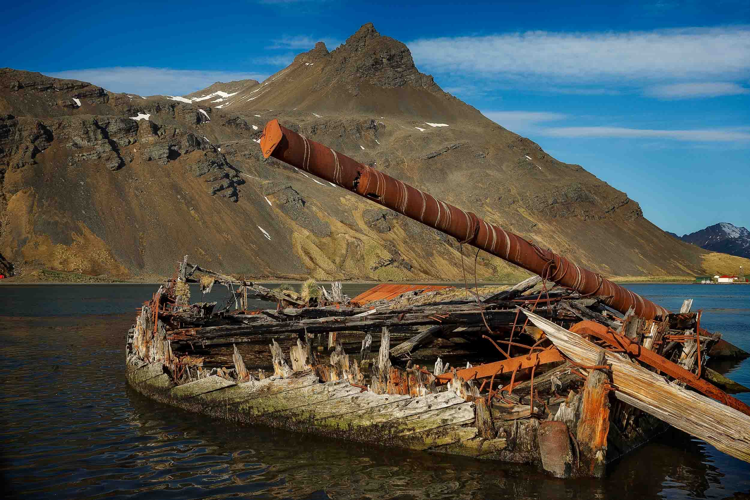 The remains of an    old boat    in the waters off    Grytviken   ,    South Georgia Island   .