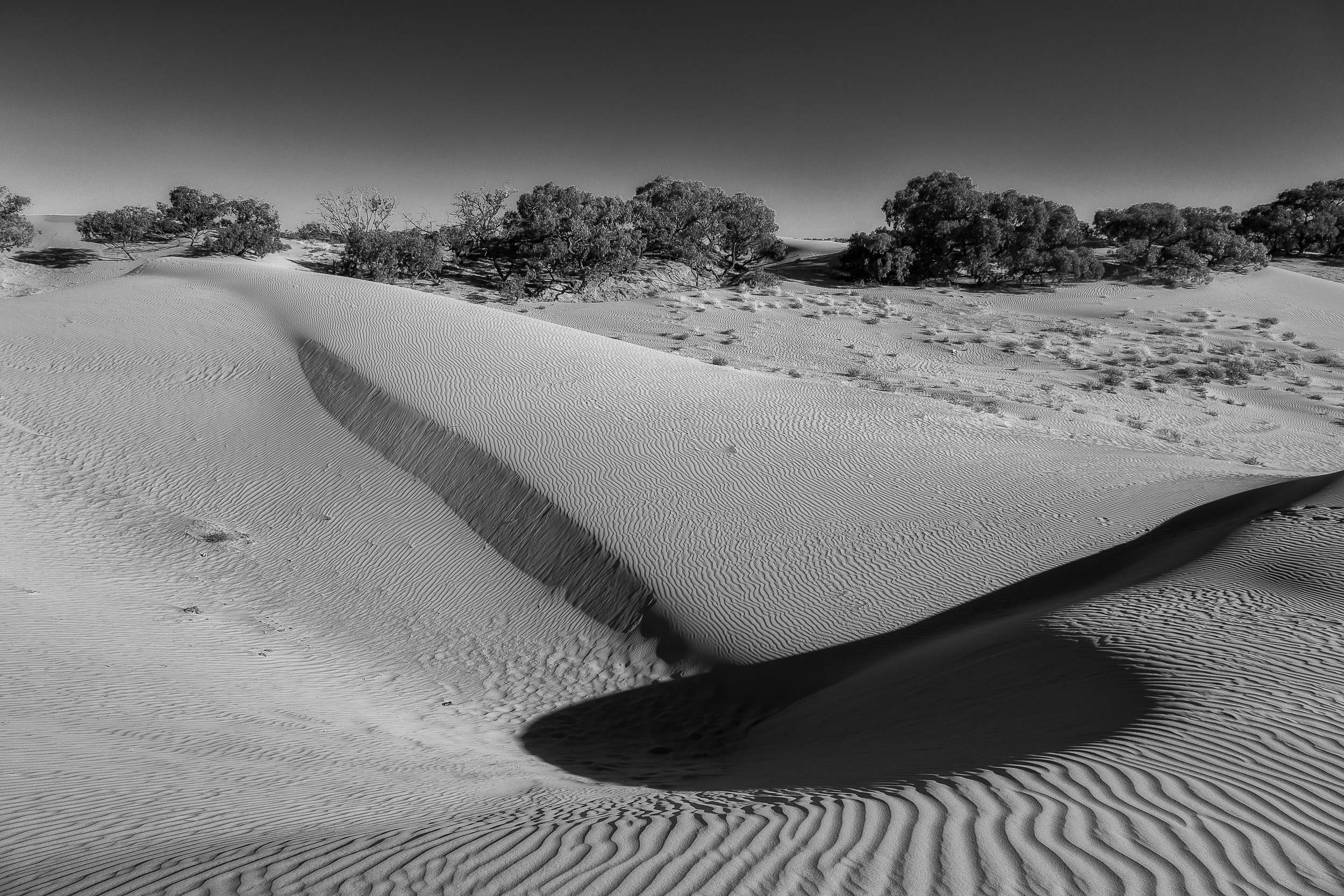 Abstract shapes and textures at the    Perry Sandhills    in South Western NSW,    Australia   .