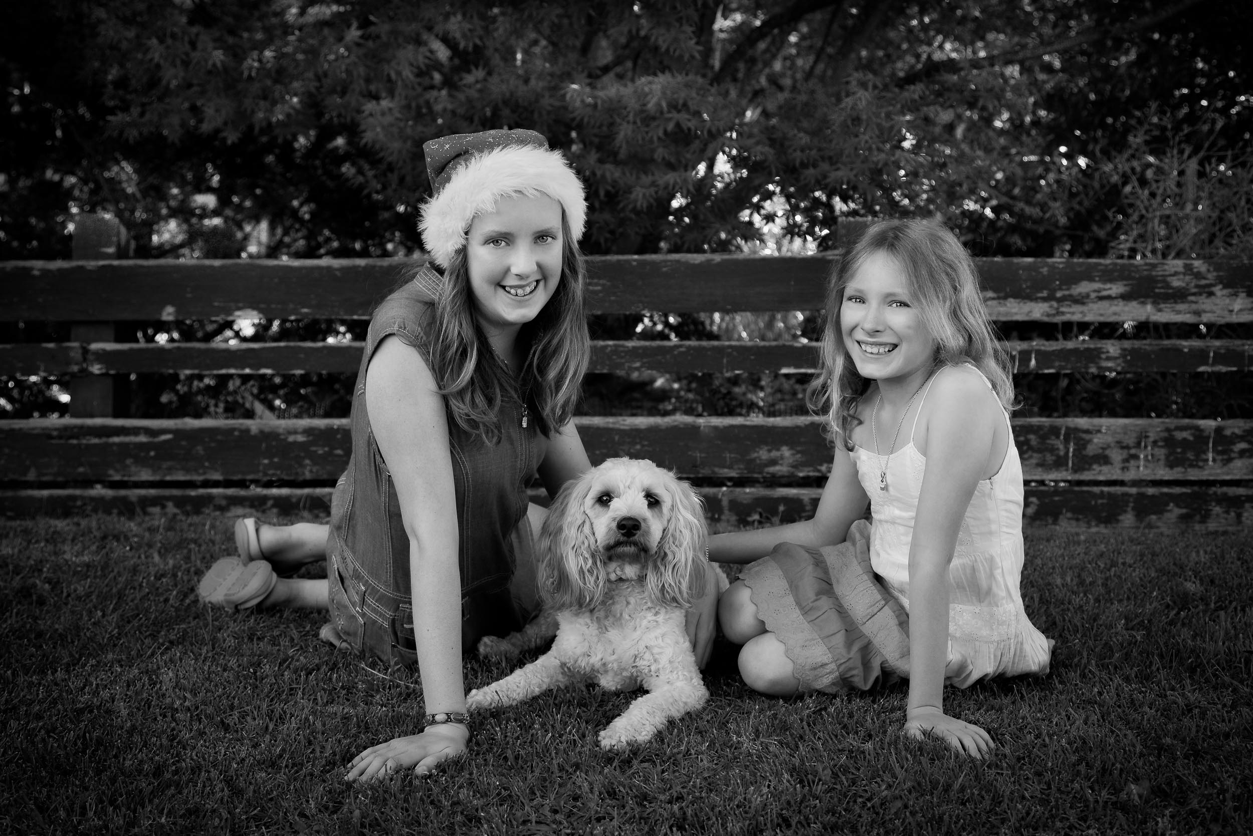 Christmas at grandad and nana's house with    Anna, Jessica and Rocky   , the Wonder Dog.