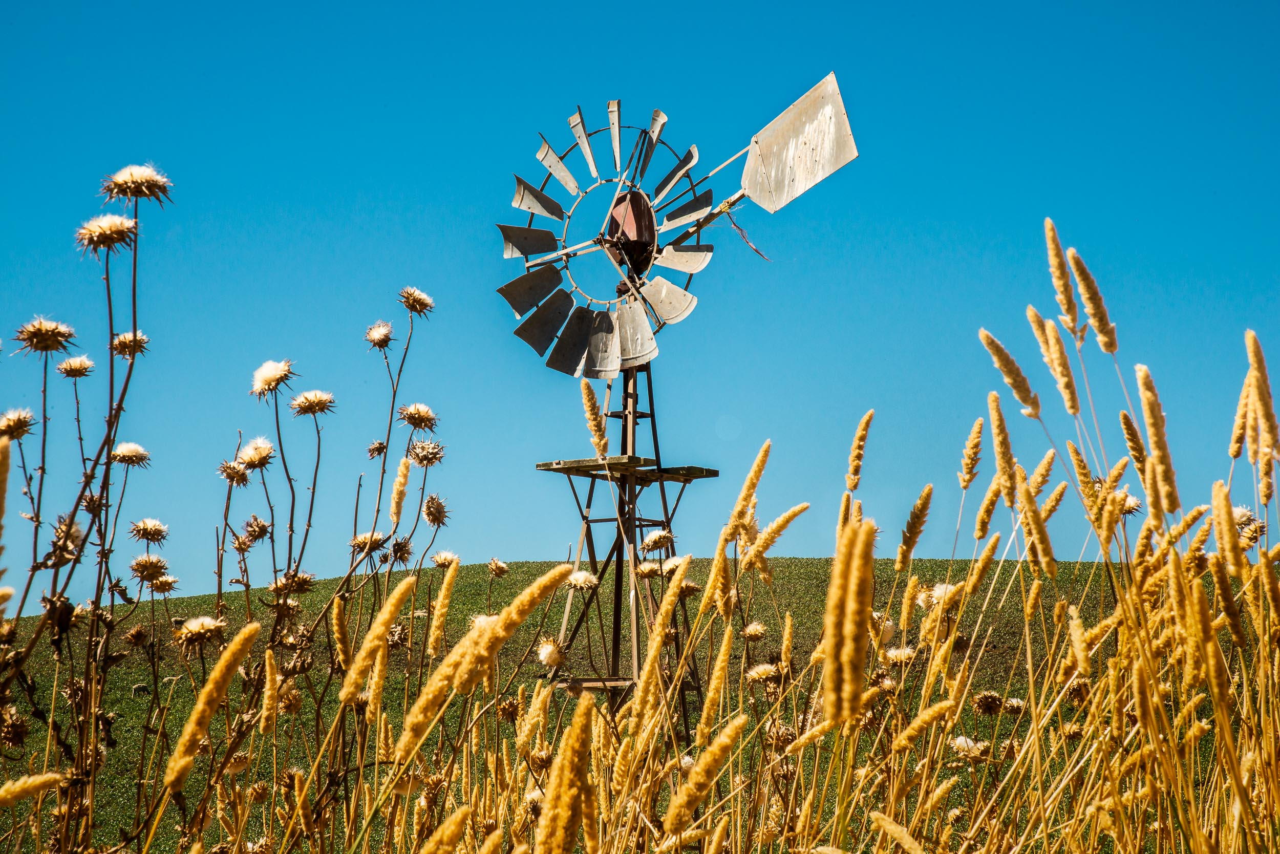 It was around    42 degrees Celsius    when I made this image of an old windmill near the tiny community of    Byaduk    in Western Victoria,    Australia   .