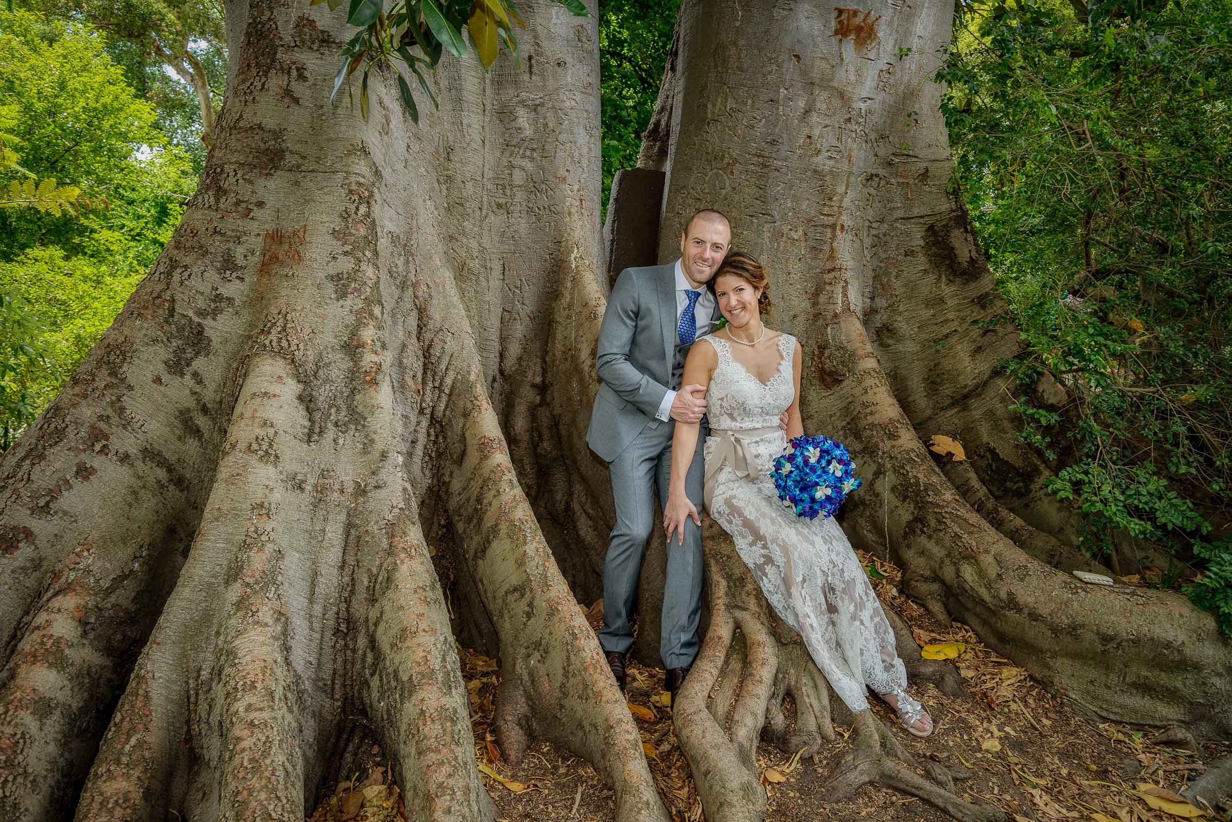 Bride and groom    relaxing on the trunk of a huge tree in the    Melbourne Botanical Gardens   .