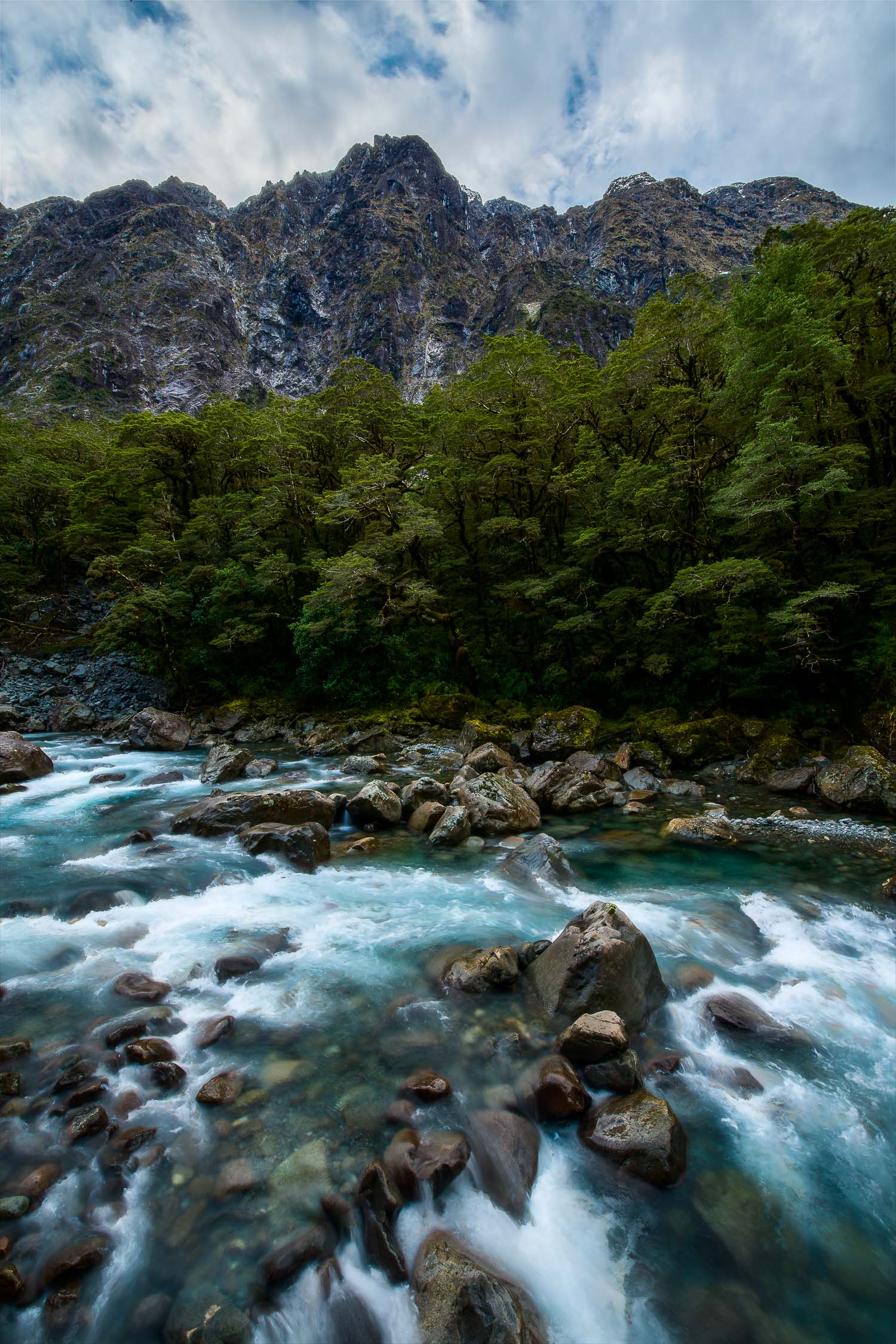 The dramatic    Cleddau River    rushes towards the sea near    Milford Sound    in Fiordland,    New Zealand   .