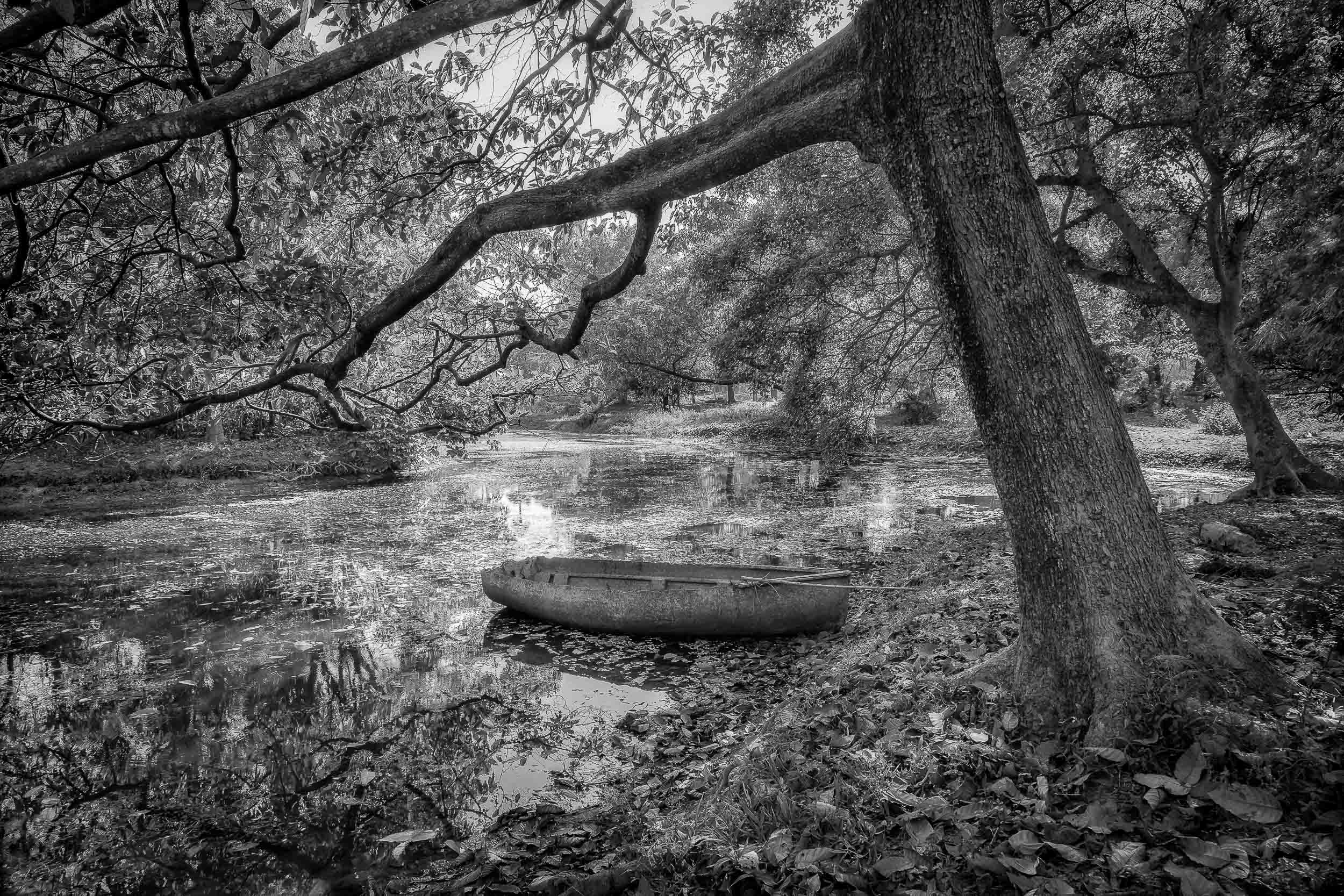 An    old boat   , under    dappled light   , in the grounds of the    Botanical Gardens    in    Kolkata   , India makes for a very idyllic and pictureseque image.