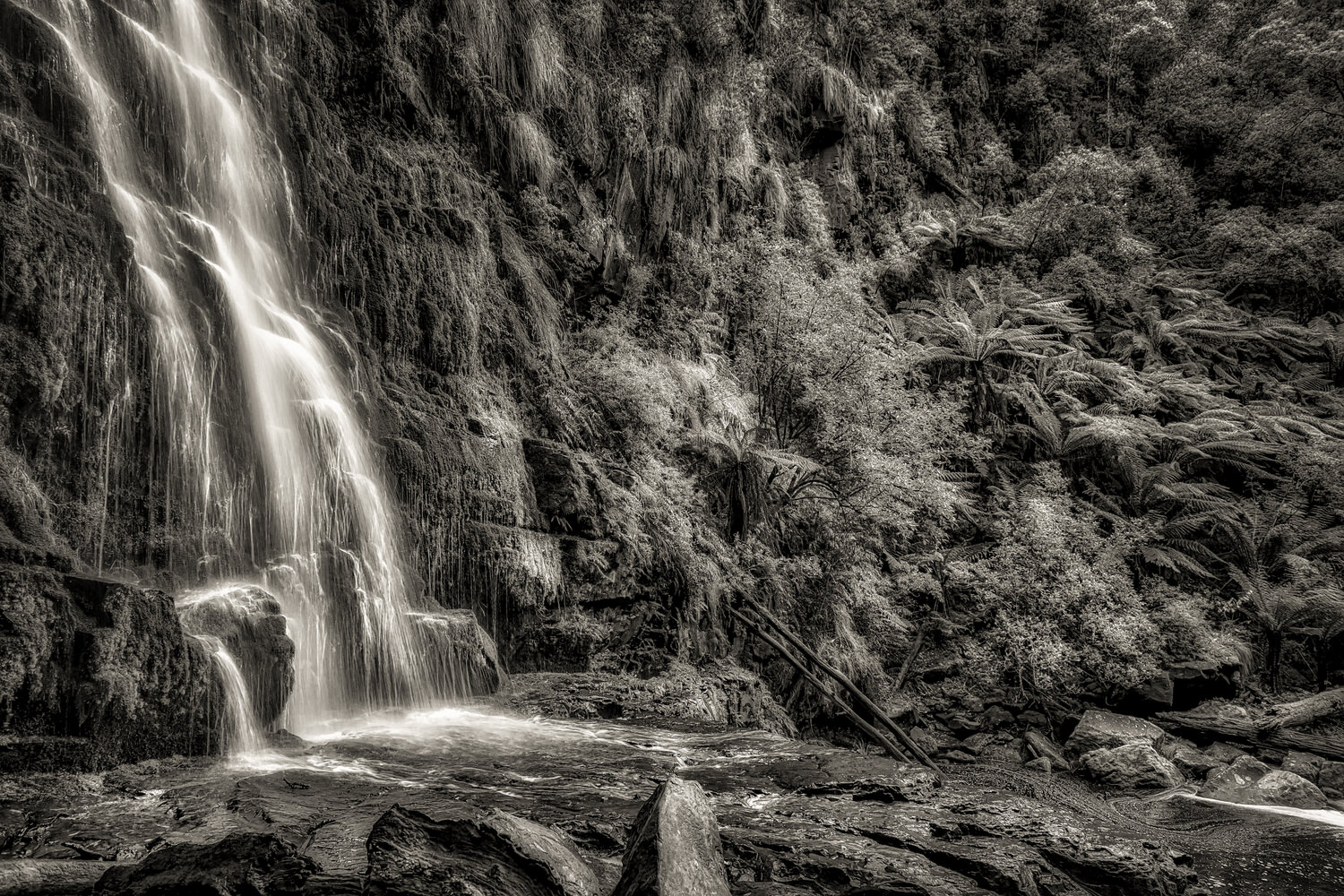A black and white rendering of the base of    Erskine Falls    and surrounding rainforest in the    Great Otway National Park   .