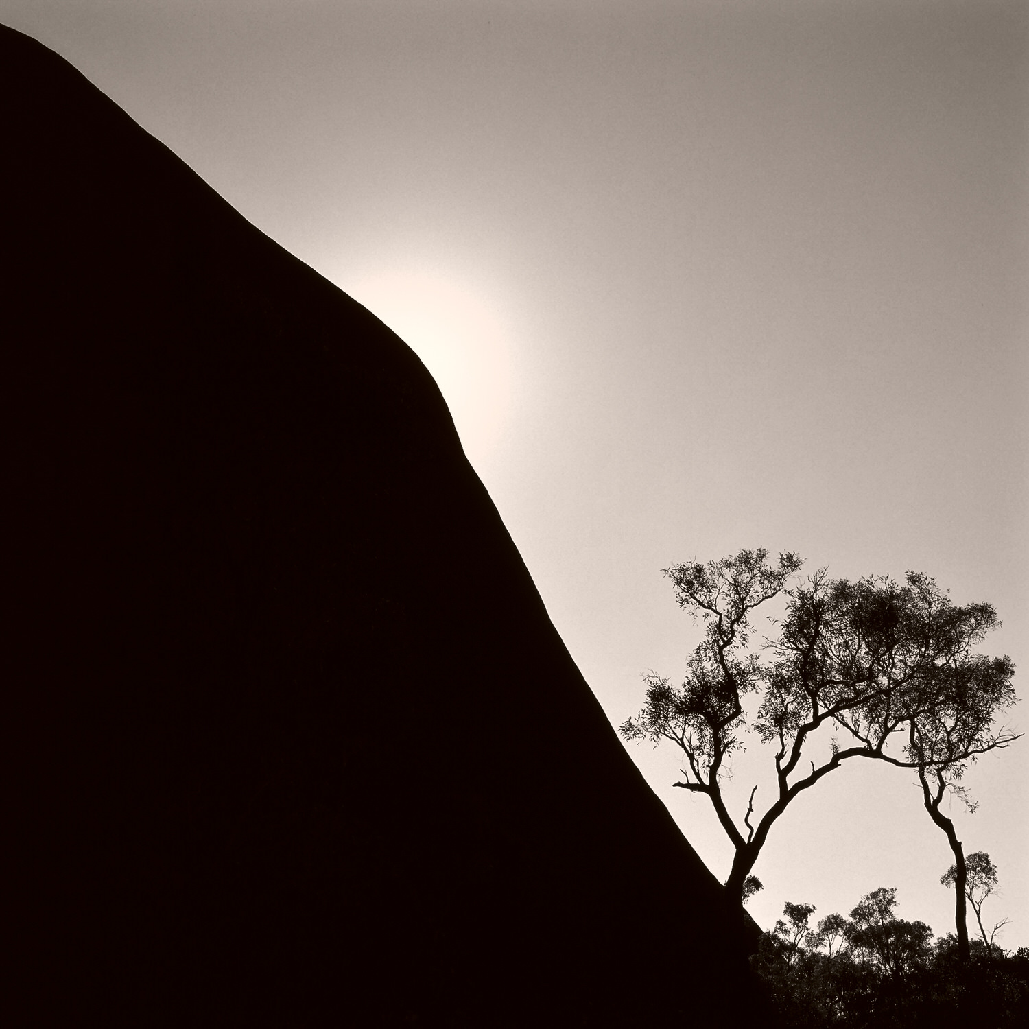 This image of the sun, rising over the back of Uluru in Central Australia is dedicated to    Jim Stynes   , Melbourne Football Club champion.