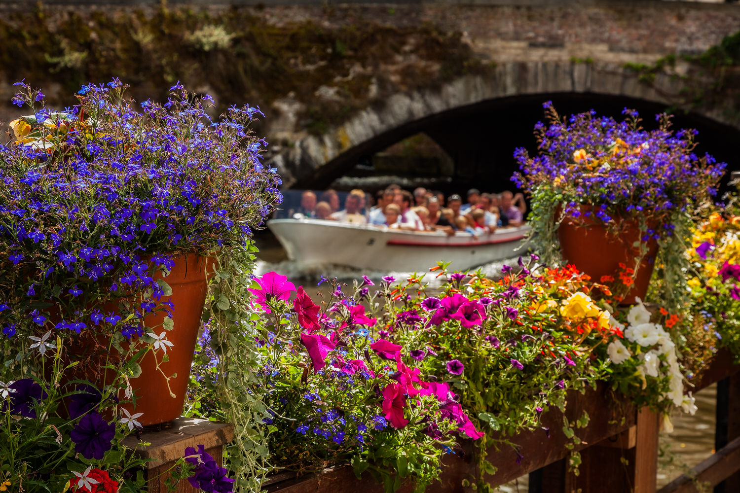 Colorful flowers await visitors touring the canals of  Bruges  on a beautiful summer's day in West Flanders,  Belgium .