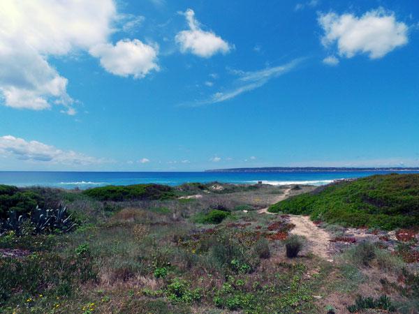 Formentera-Beach.jpg