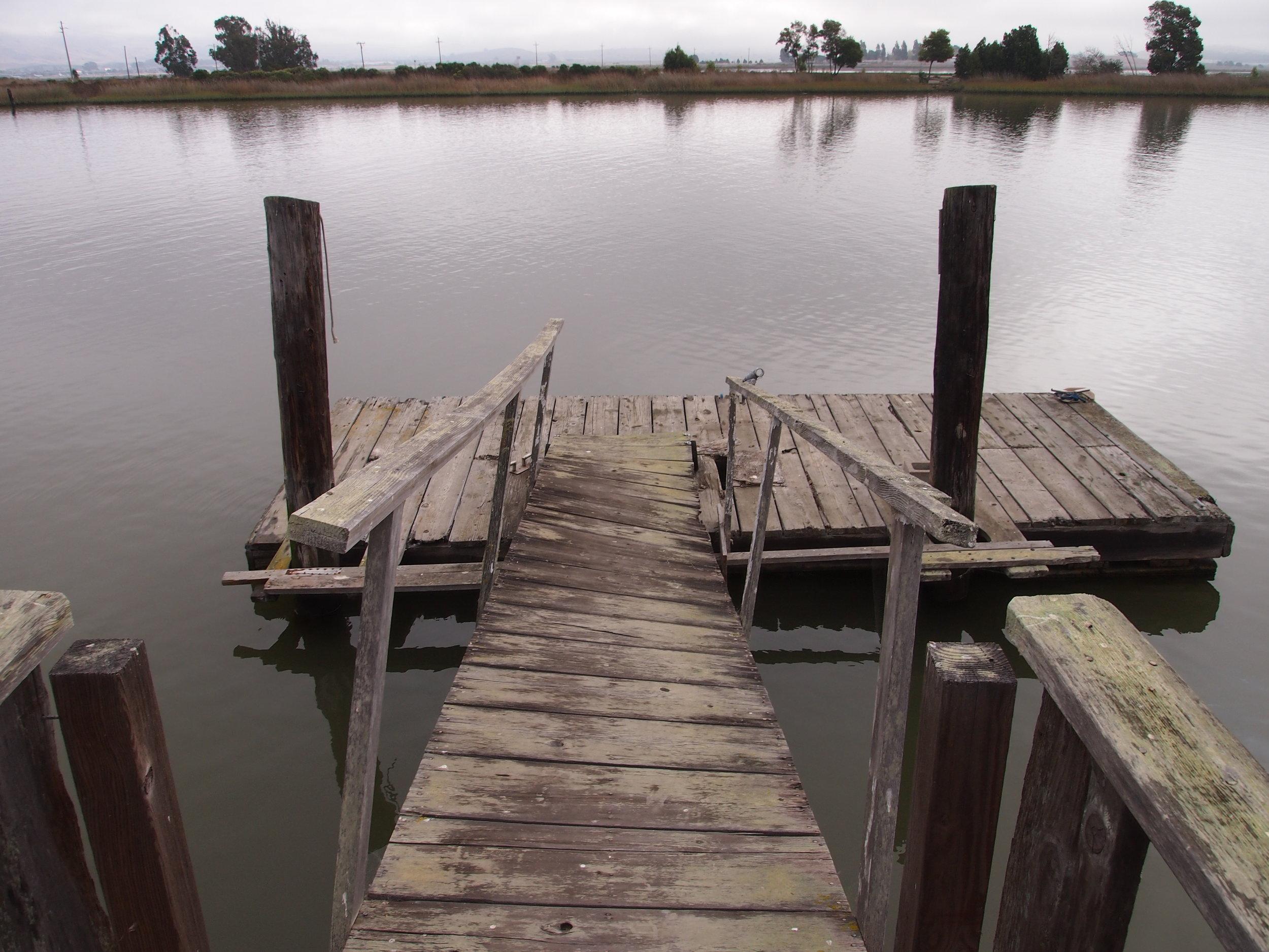 Scholium-Wines-Abe-Schoener-Dock.jpg