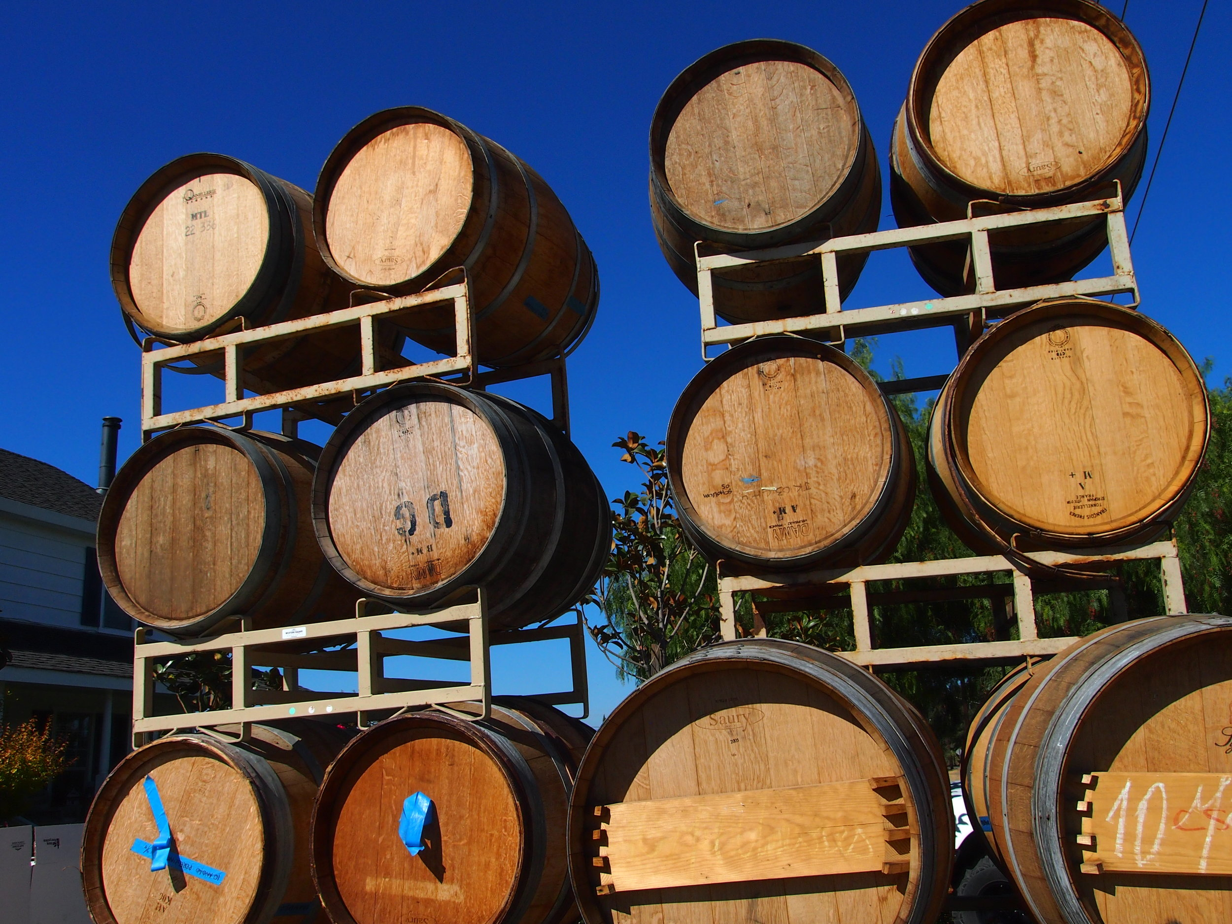 Scholium-Wine-Abe-Schoener-Barrels.jpg