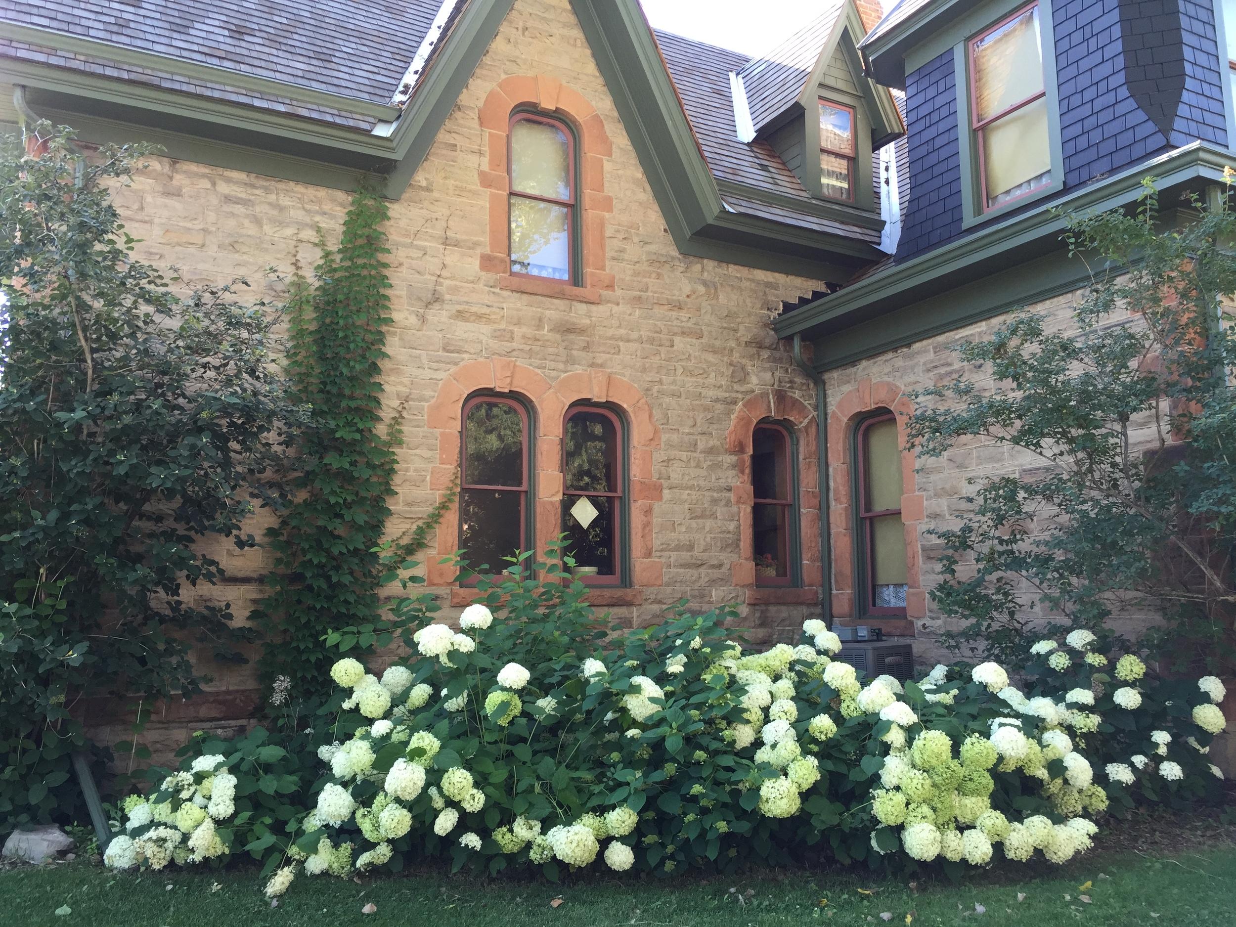 1-Avery-House-Summer-2015-snowball-bushes.JPG