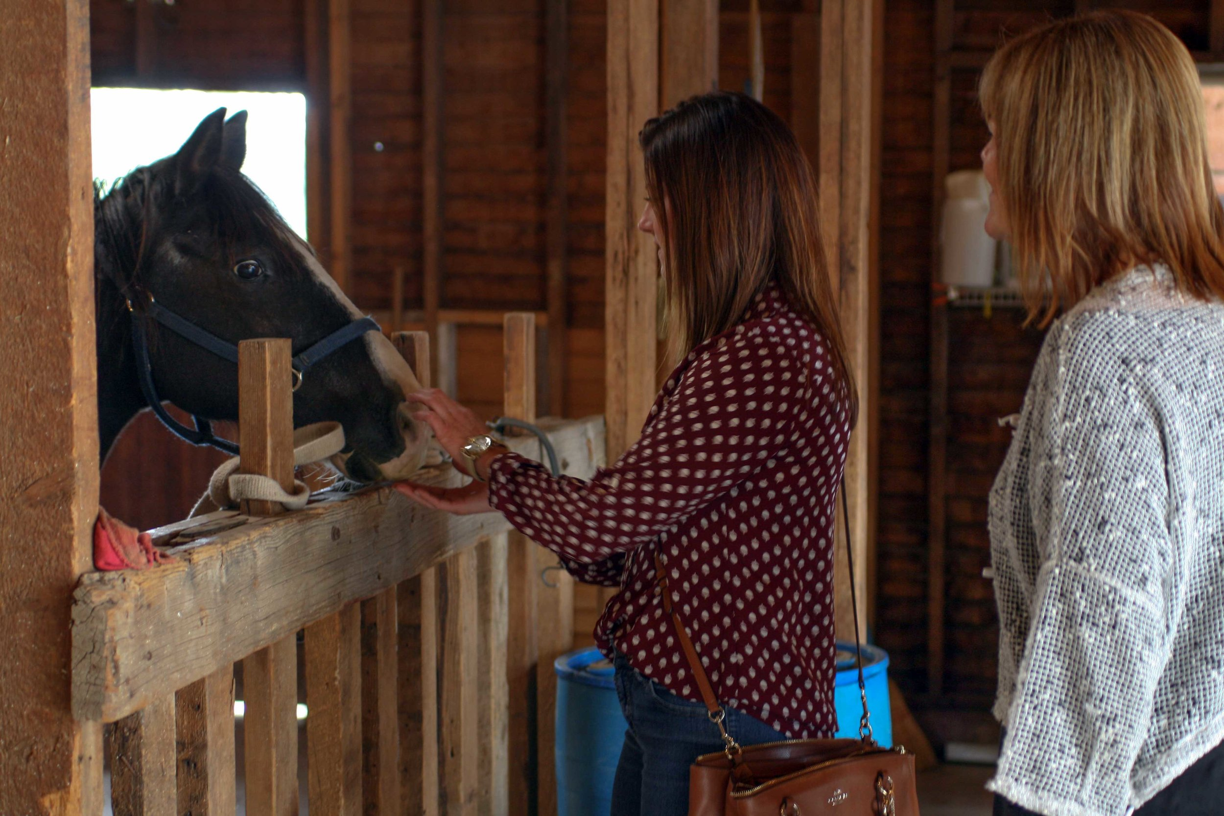 Tour attendees walked through the barn at the farm property on Overland Trail