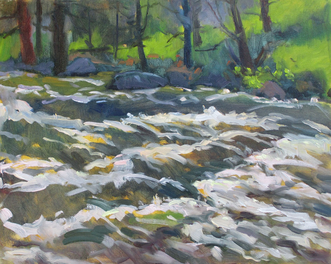 Gabel, Water Play, Oil-plein air, 5-16-18,16x20,800. Poudre River.jpg