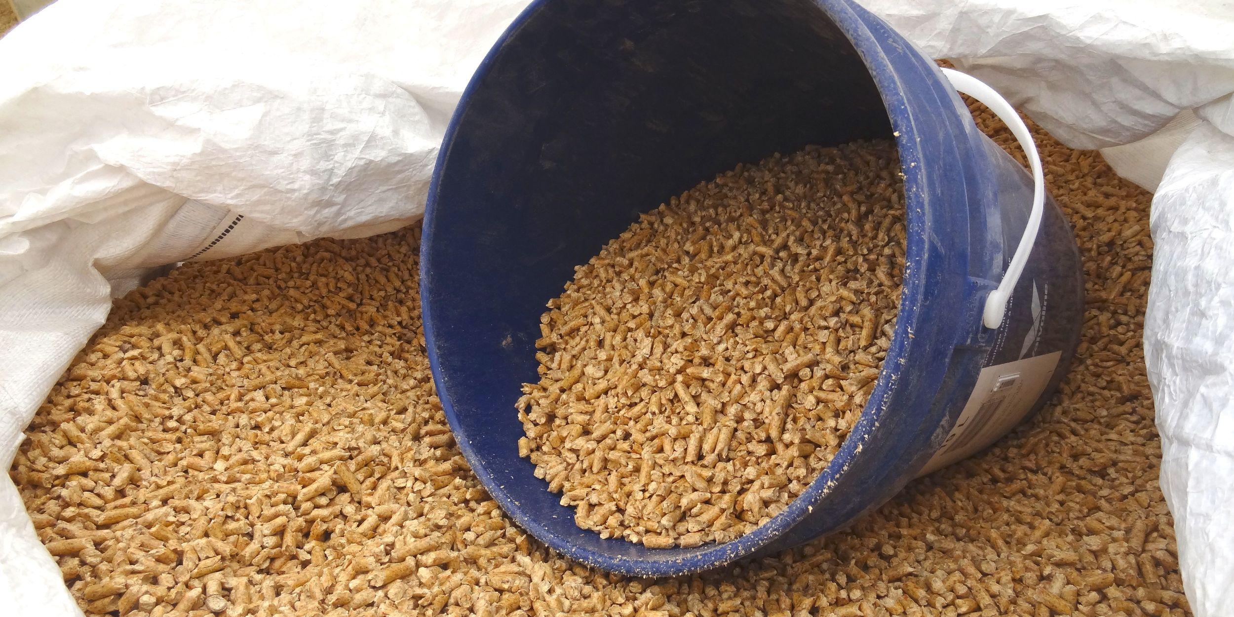 Wood pellets in Tote