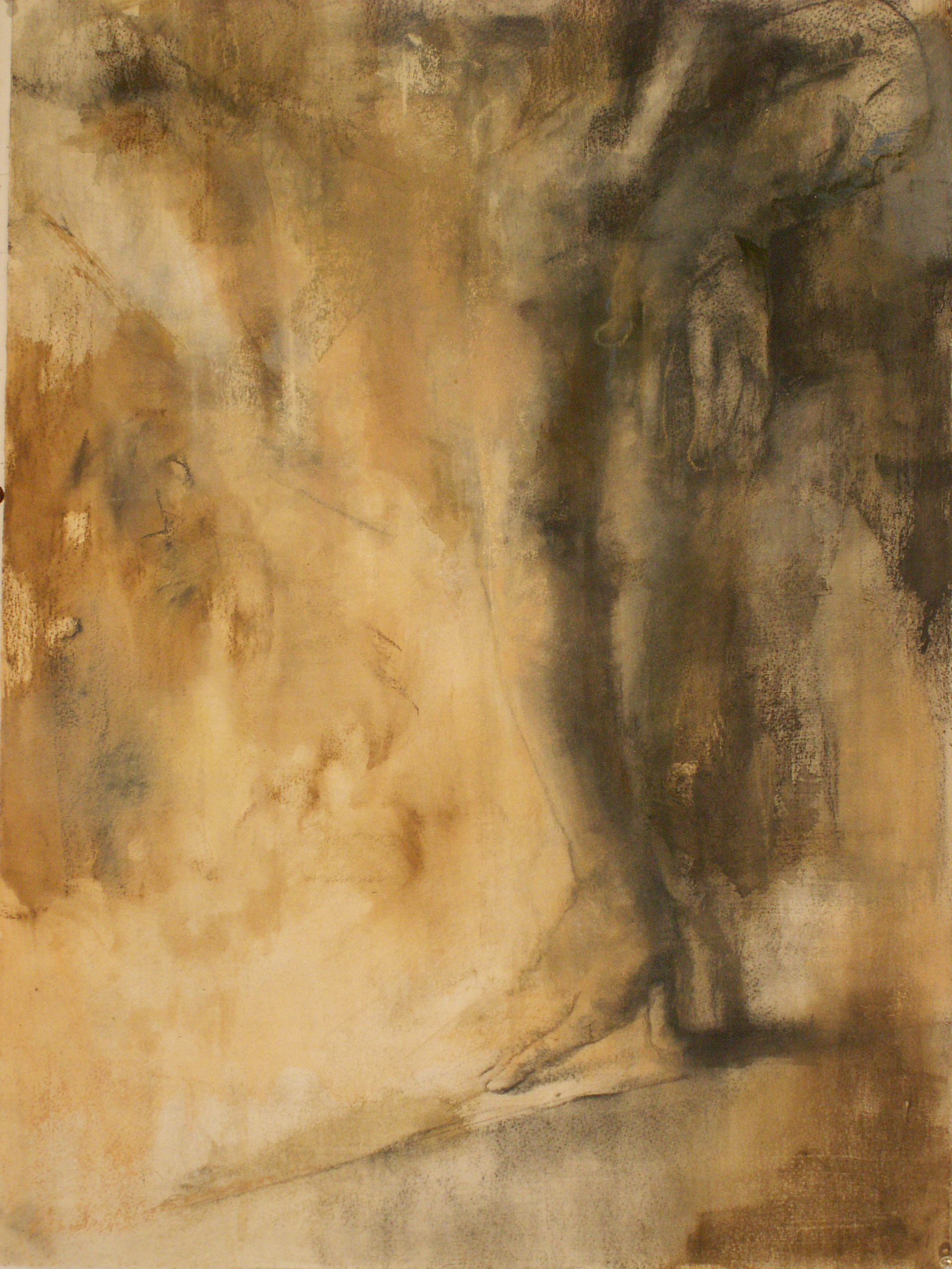 """""""The Rheeperbhan"""" charcoal & pastel 2009"""