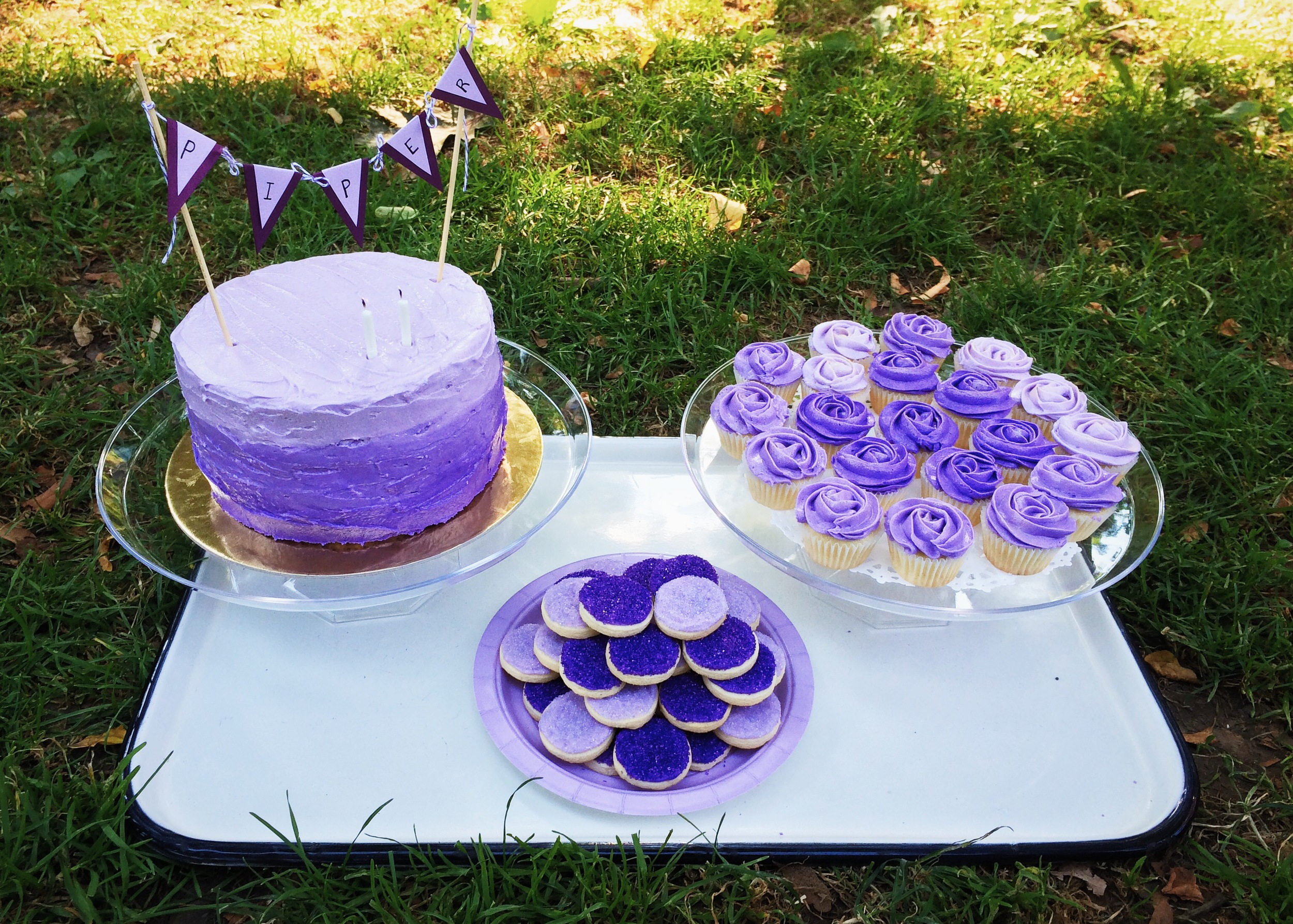 Purple Picnic Treats