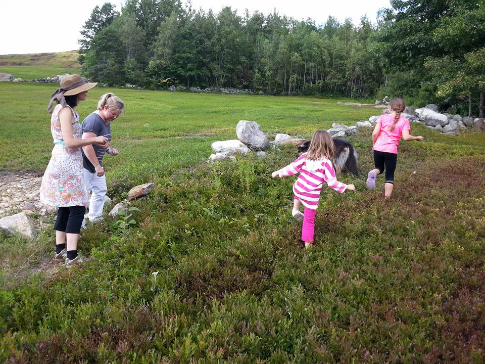 Picking blueberries and making memories with my nieces visiting from Michigan.