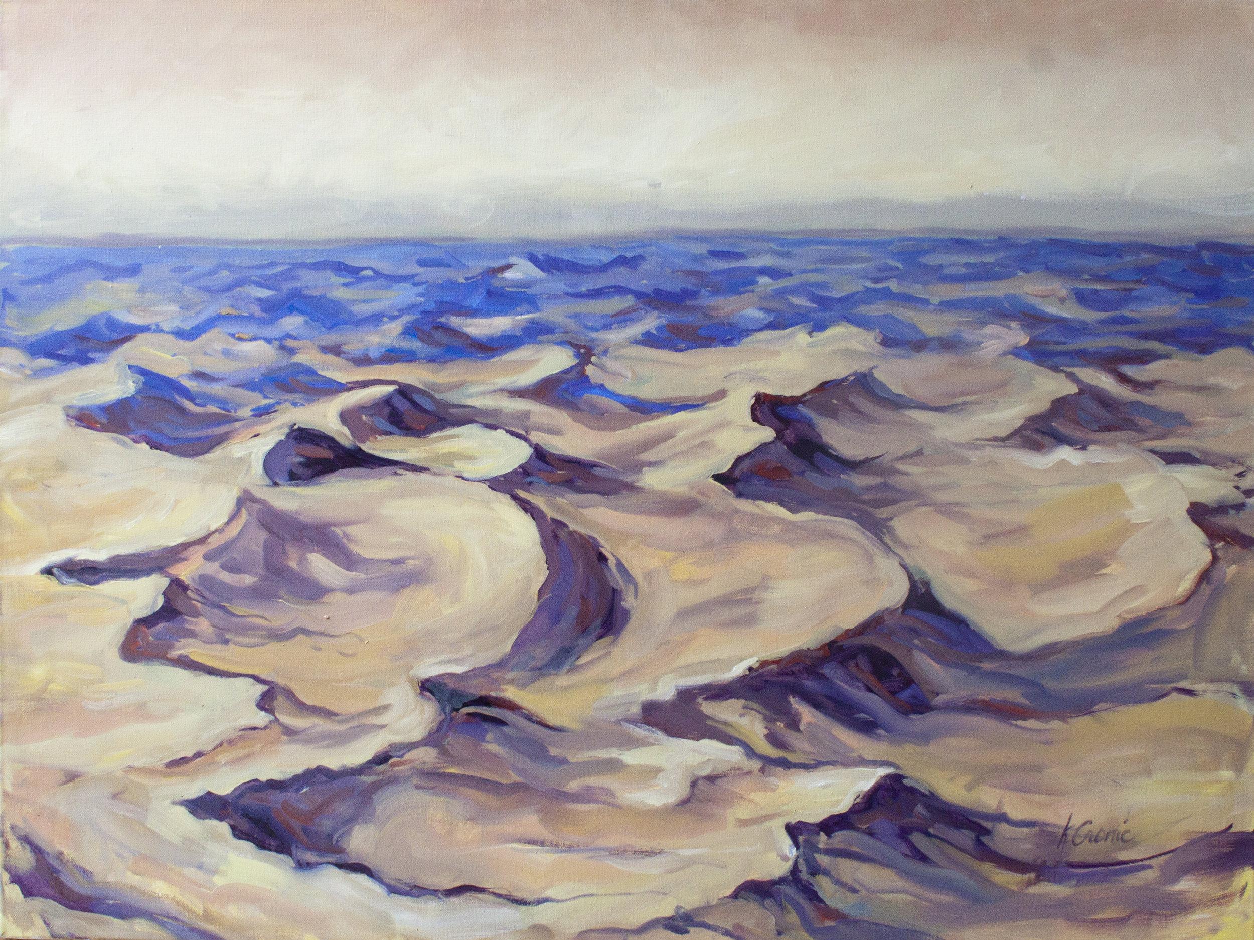 Dunes Commission 12x16.jpg