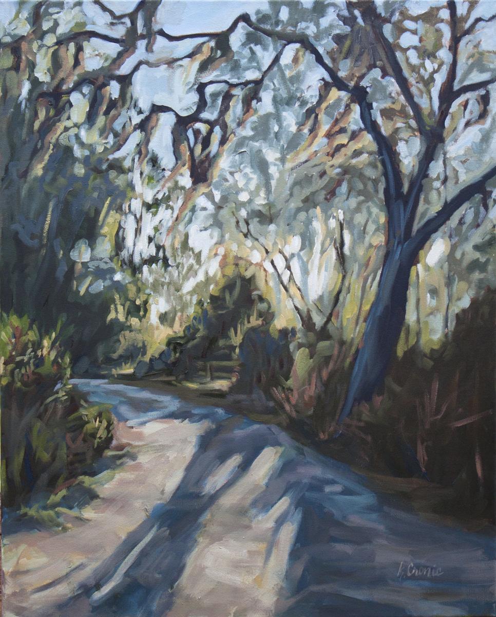 Oak Path - 24