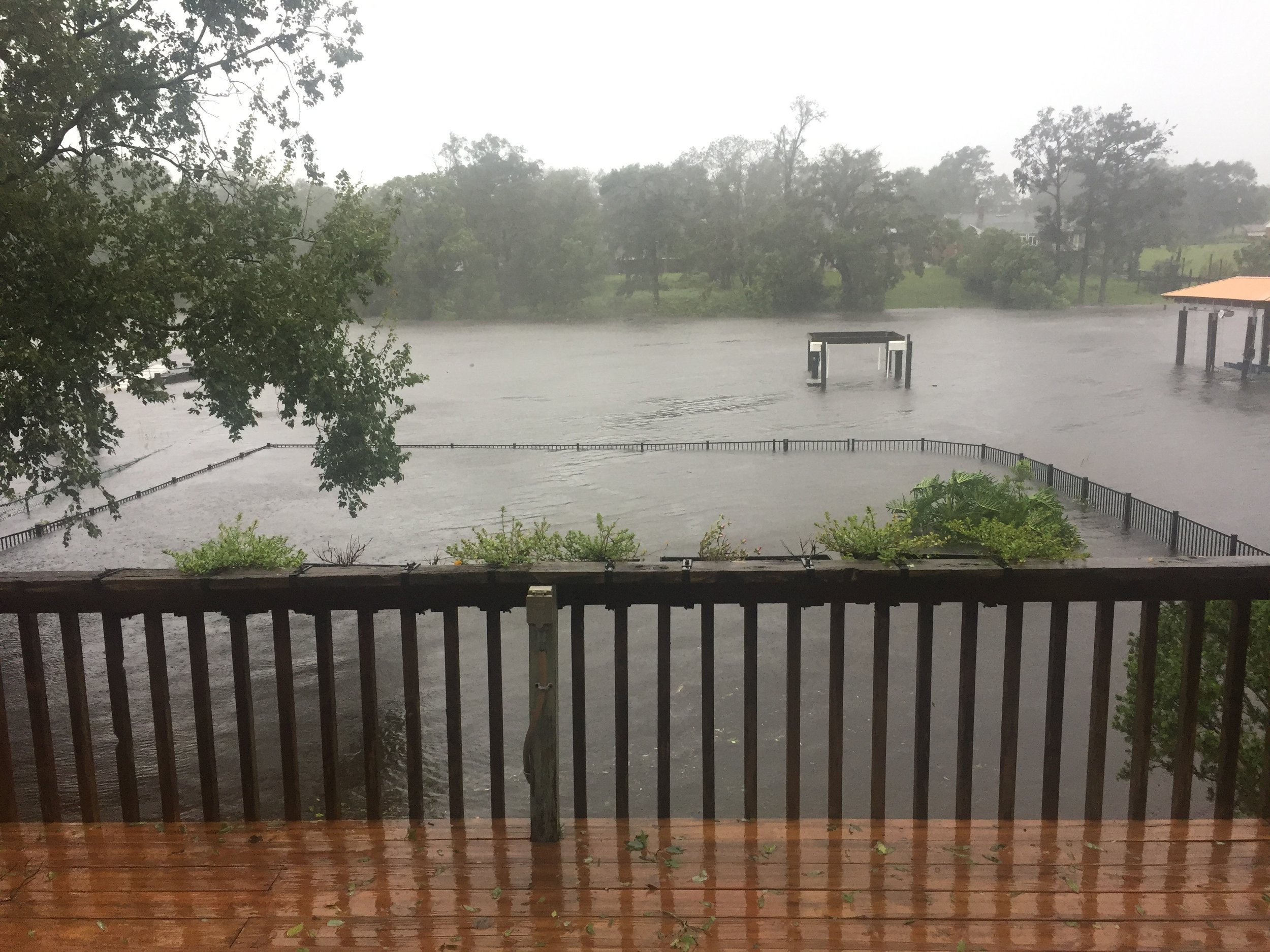 What our backyard looked like when we evacuated (it got about another 8 inches higher after that)