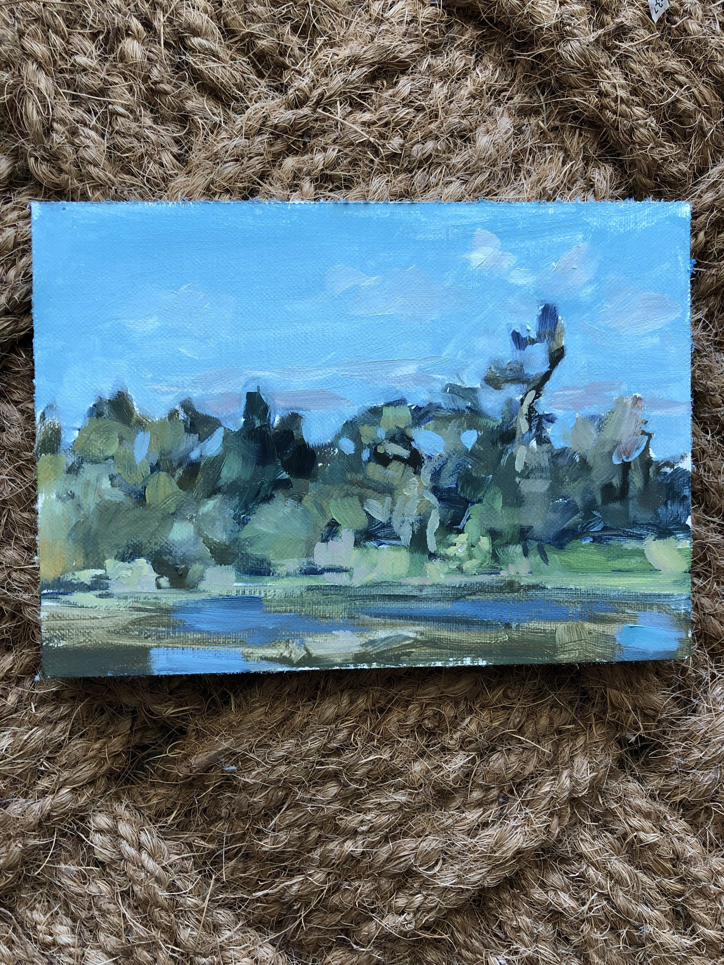 23 November 2018. Ah, finally a moment for plein air. Today is Black Friday and my In laws were in town, kayaking during this painting. before you get all impressed that we resisted the sales, know that we went shopping later that day 😉