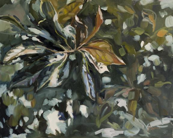 "Evergreen, 16""x20"" oil on canvas"
