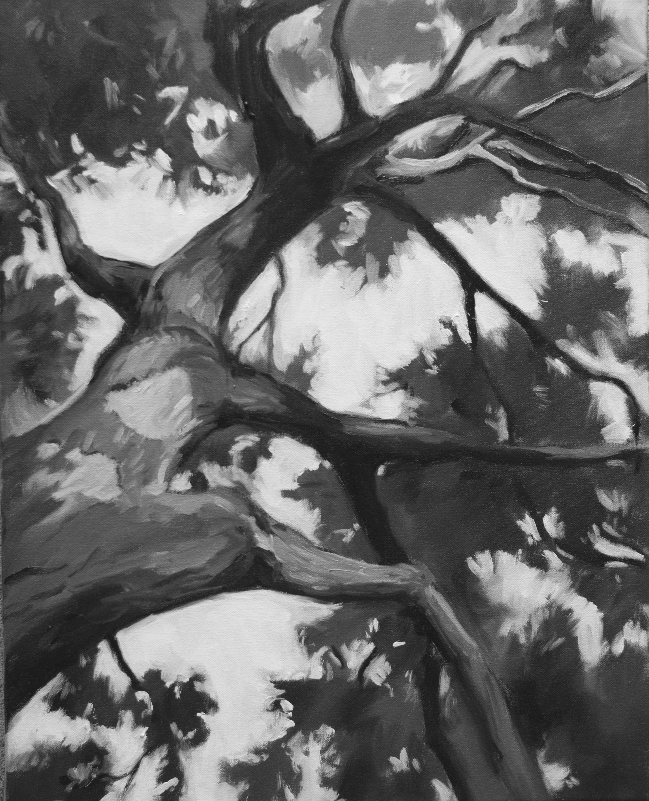 "Monochrome 2, 20""x16"" oil on canvas"