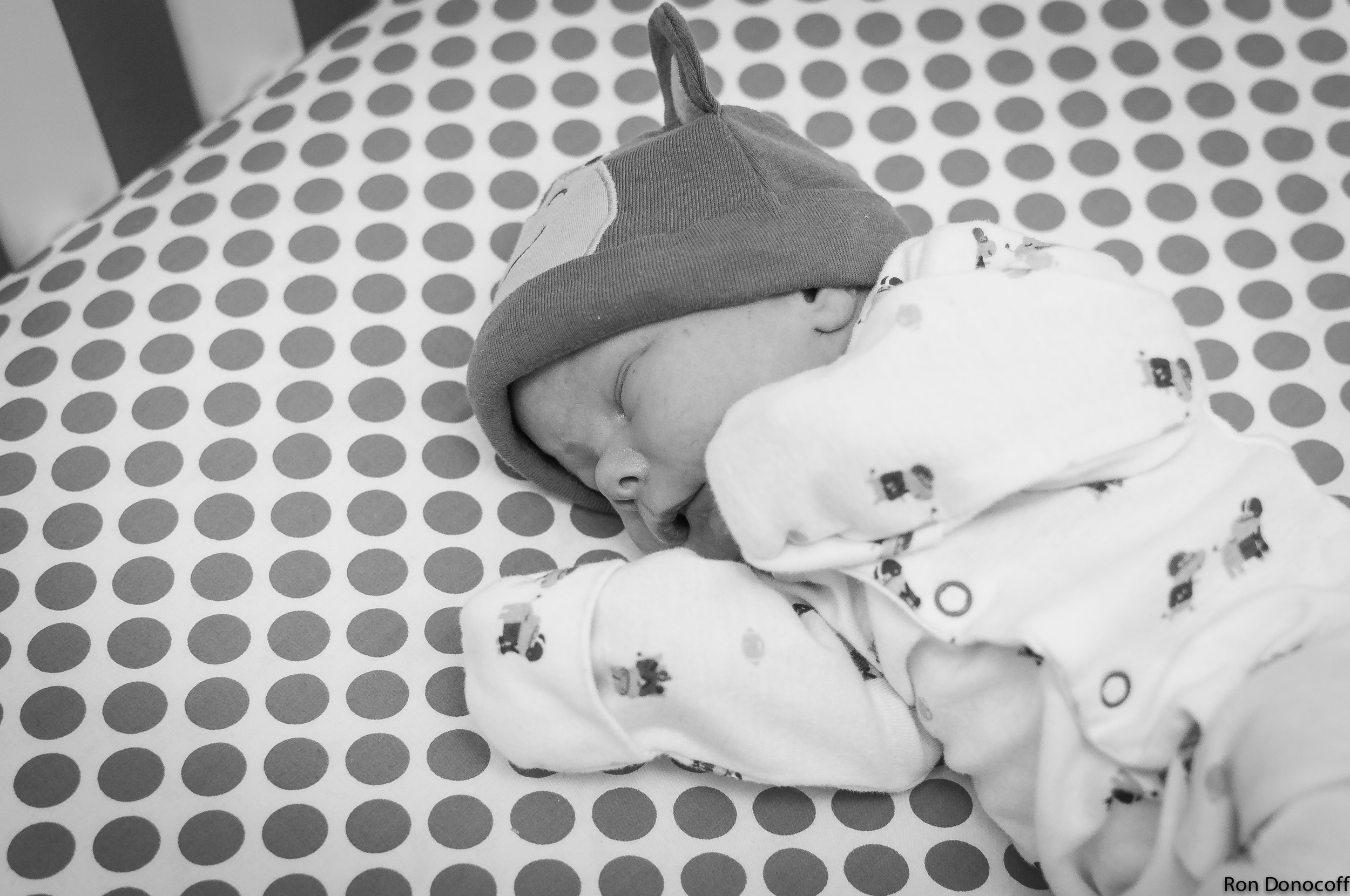 140123 - Baby Frankie-9.jpg