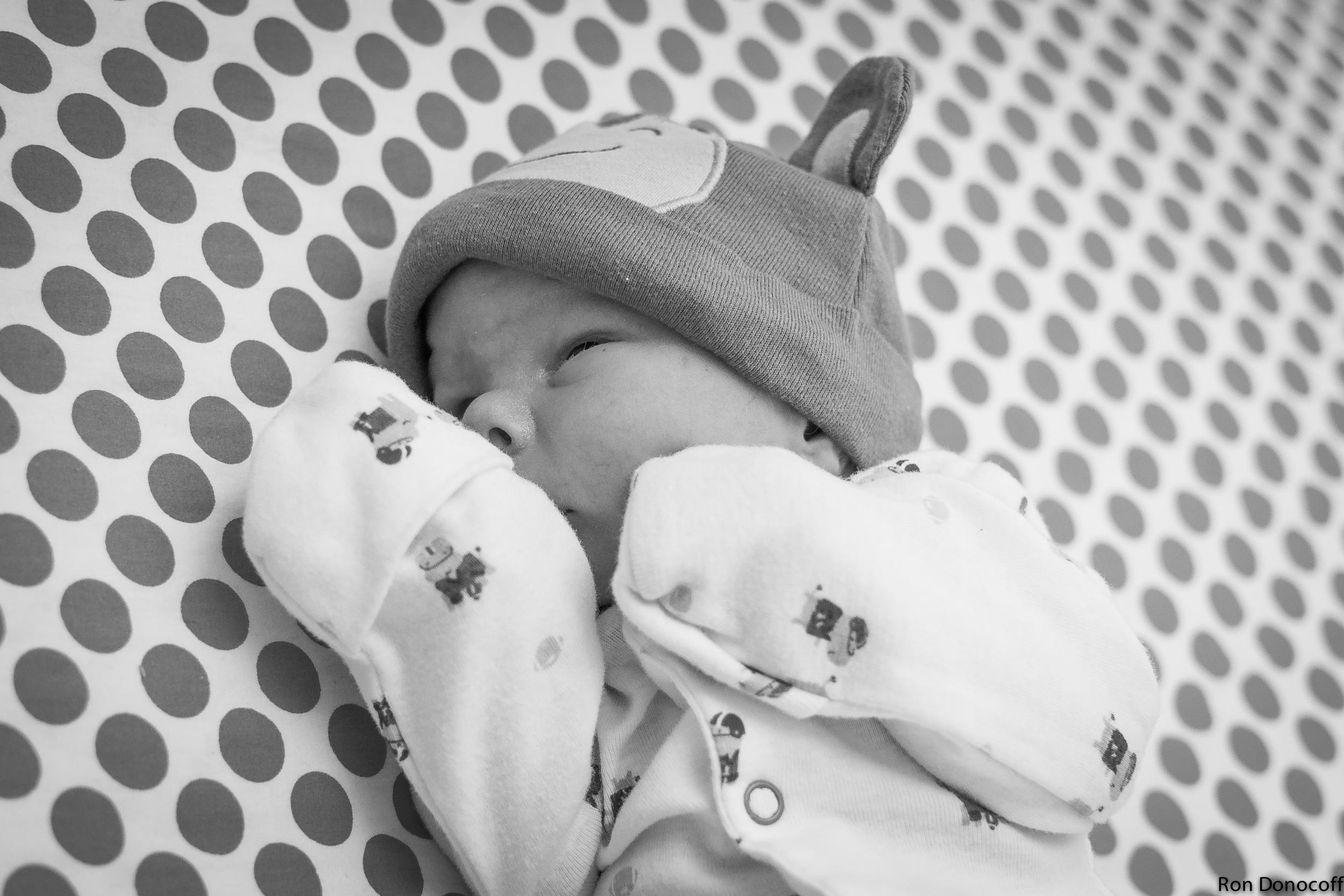 140123 - Baby Frankie-10.jpg