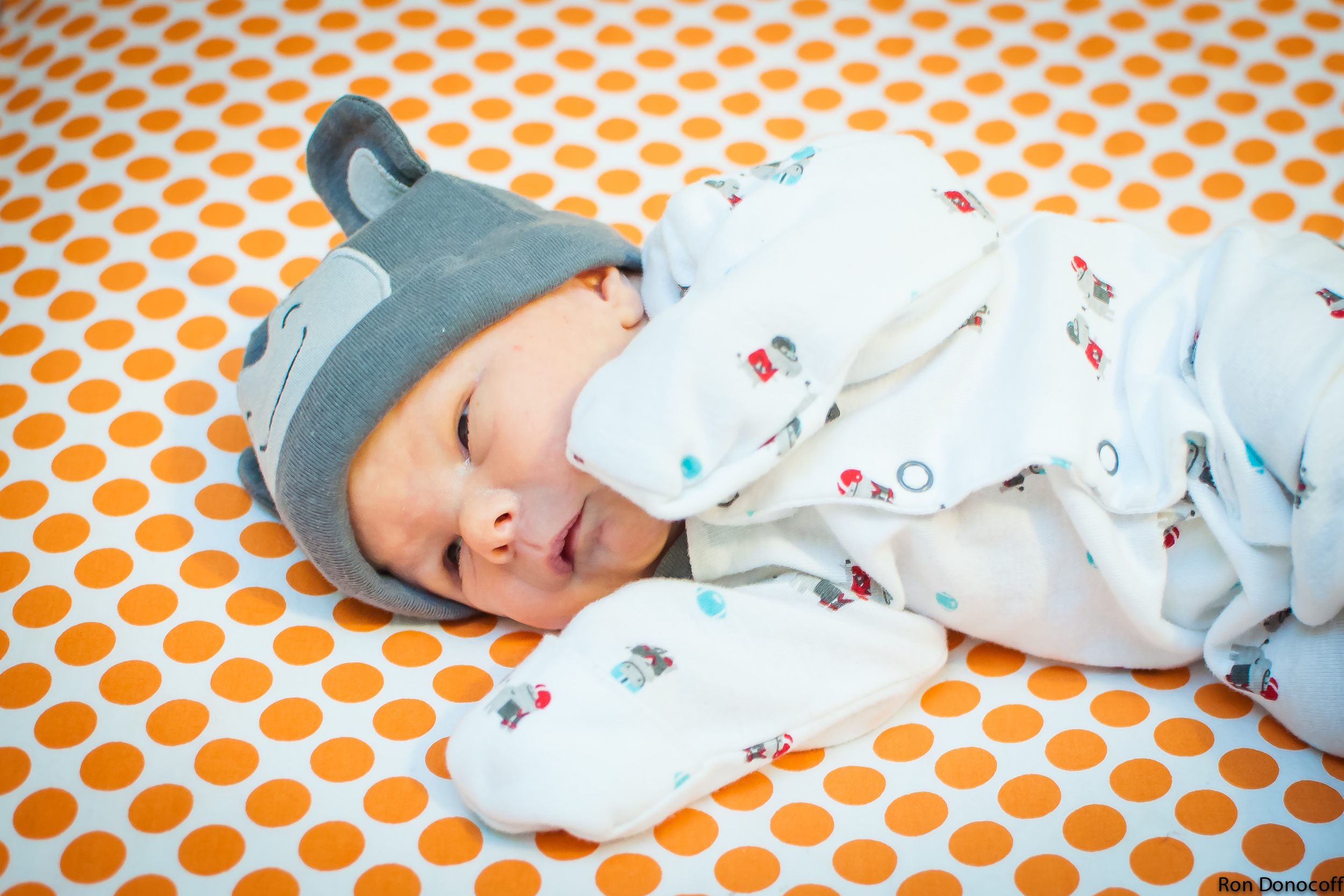 140123 - Baby Frankie-12.jpg