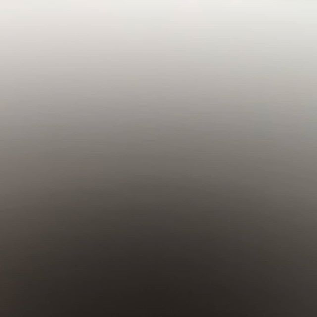 A photo from the last day of our trip to Florida. I love the abstract quality of this piece.  #fog #photo#photography #art