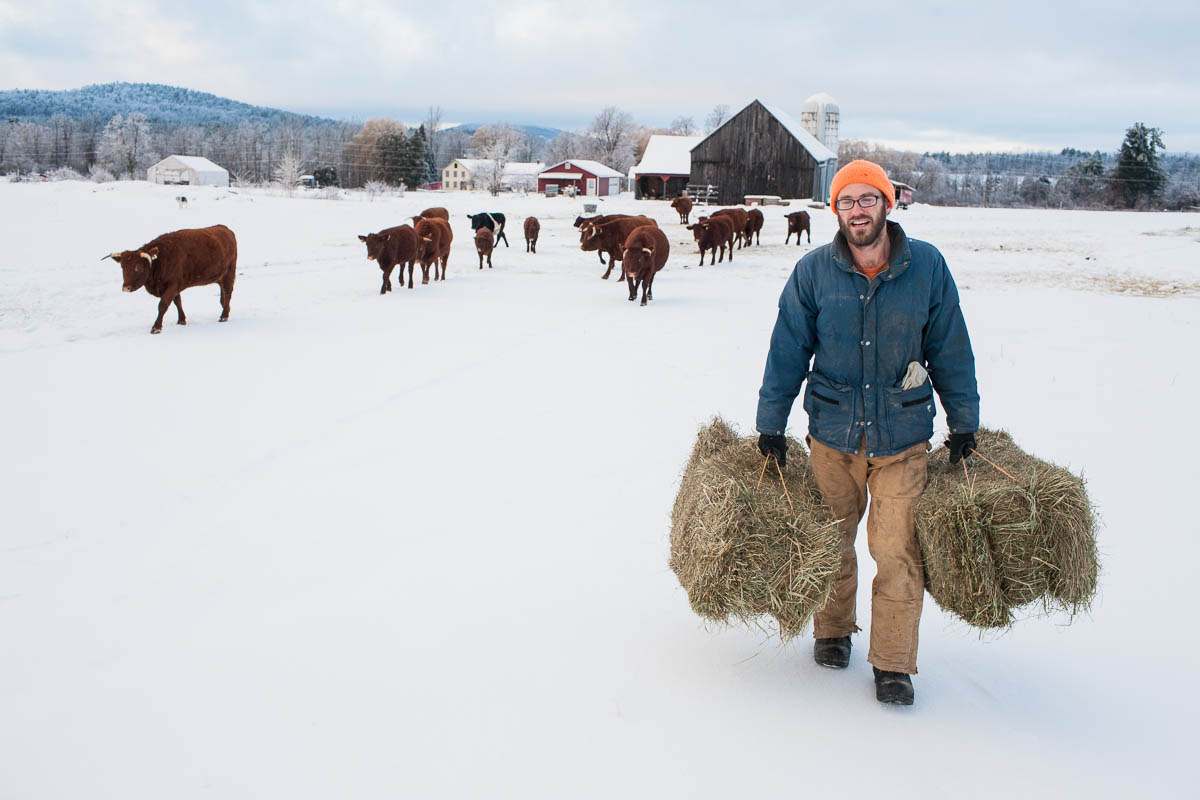 Asa feeding hay.jpg