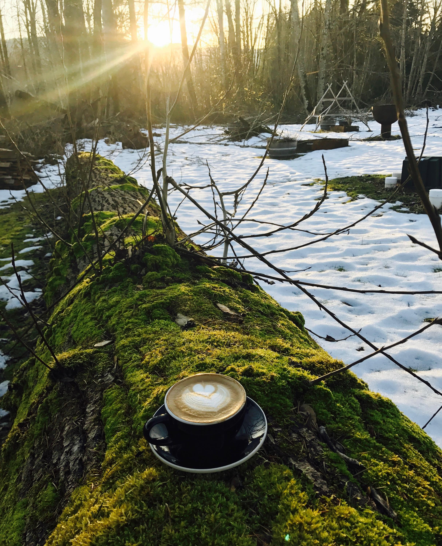 Coffee Log Time At Rifugio's