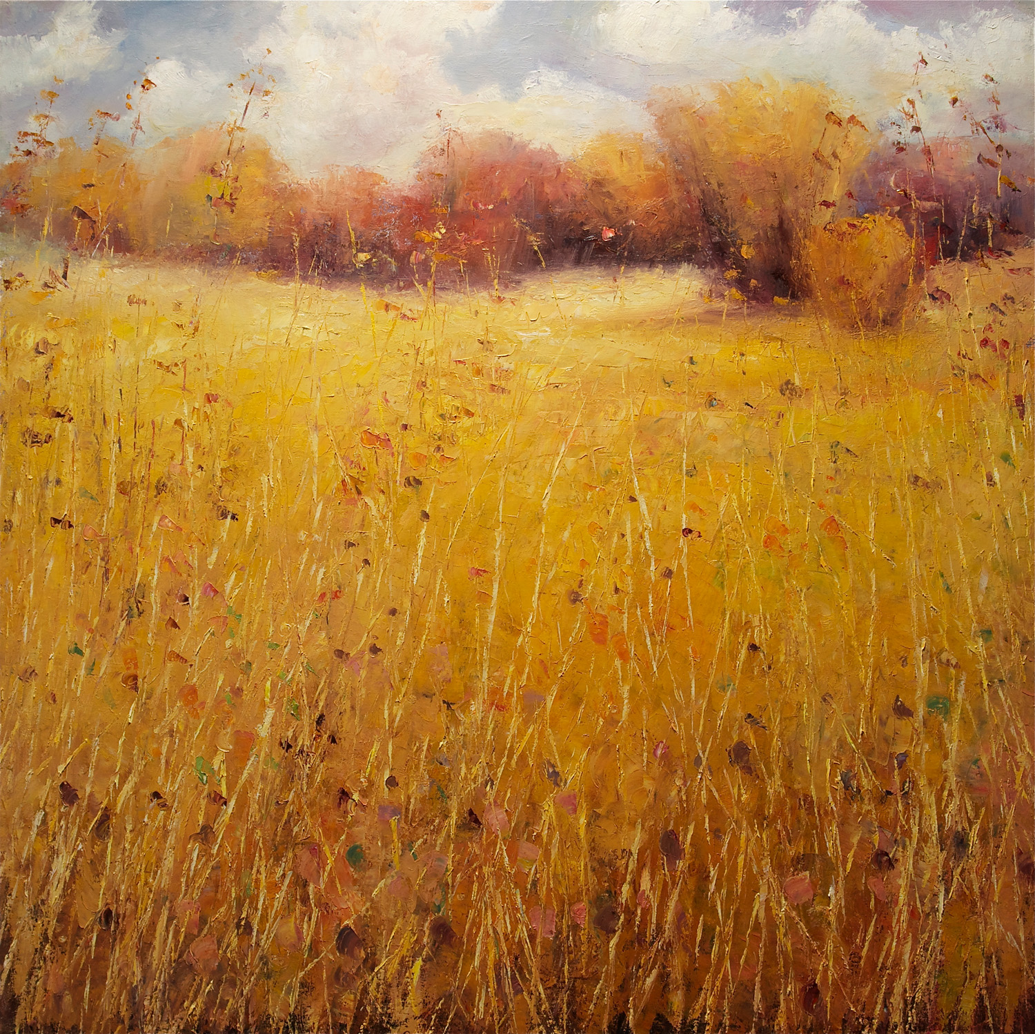 Indian Summer Grasses