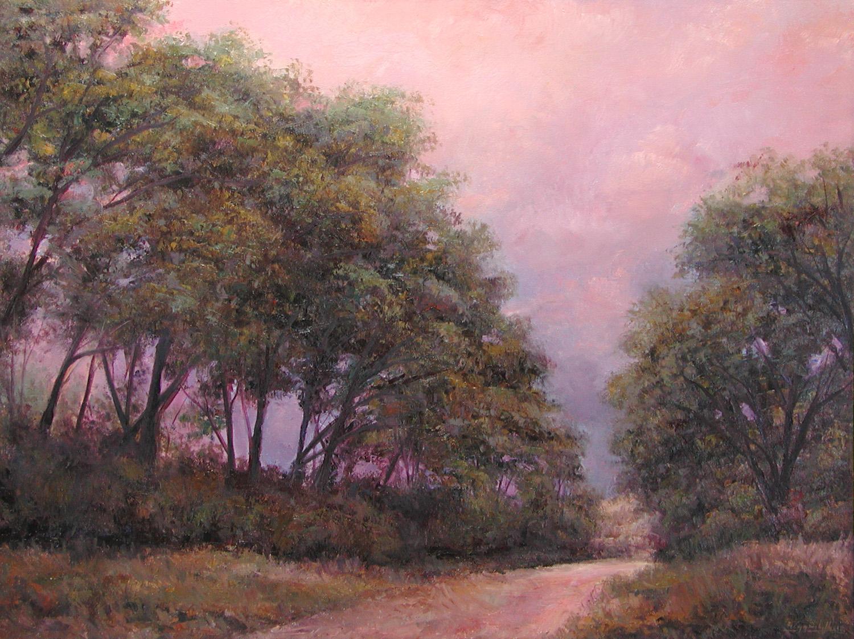 Arroyo Through Evening Cottonwoods