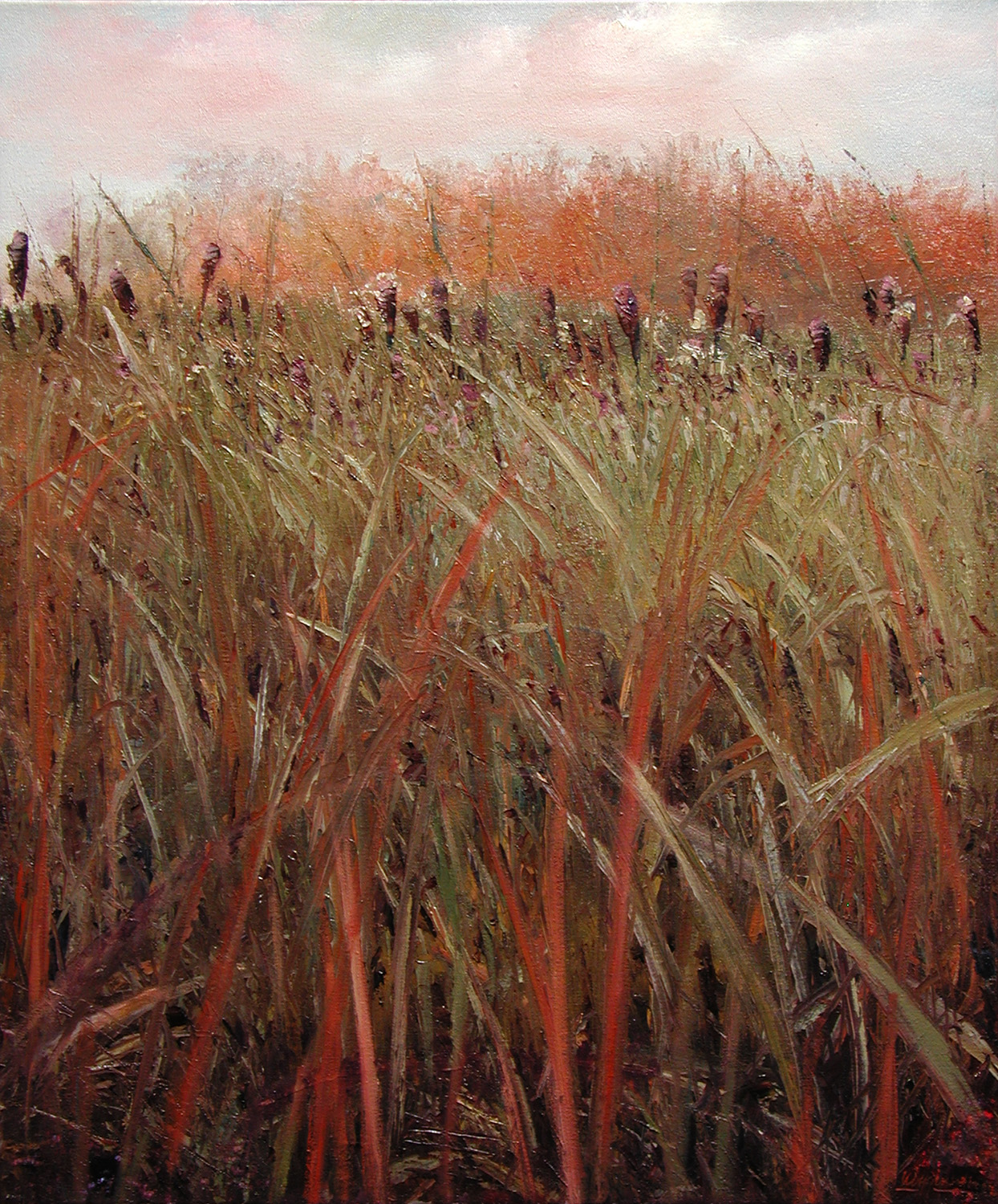 Cottonwood Farm Cattails
