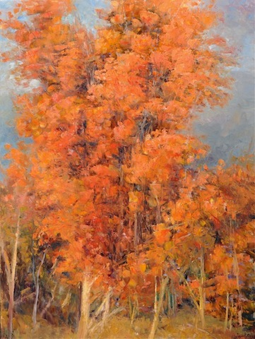 Cottonwoods, Late Fall, oil, 40x30