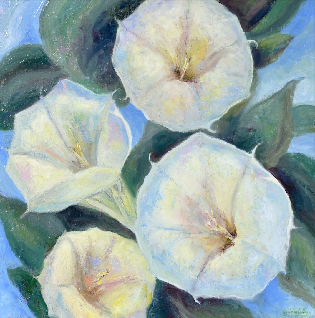 """New Mexico Lilies, oil, 36""""x36"""""""
