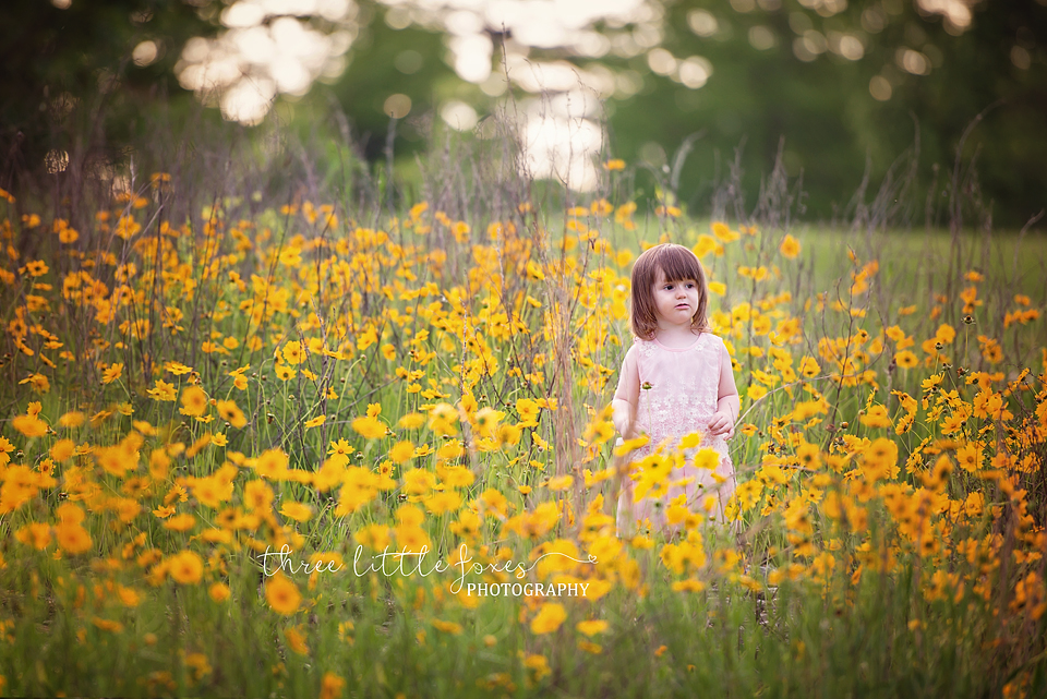 three-little-foxes-photography-childrens-photographer-columbia-missouri-cb3