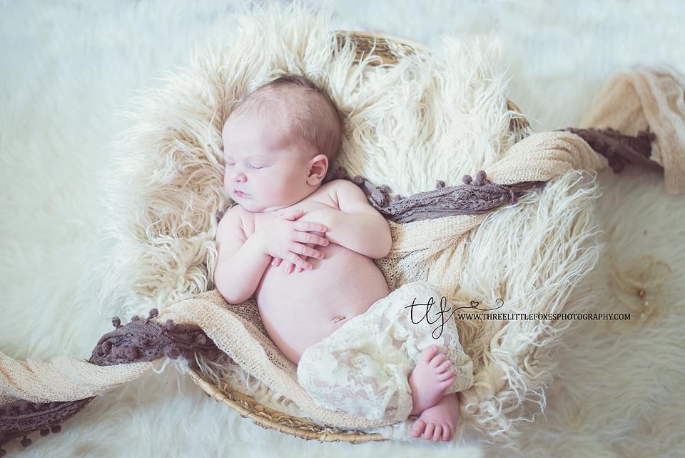 three-little-foxes-photography-newborn-photographer-columbia-missouri