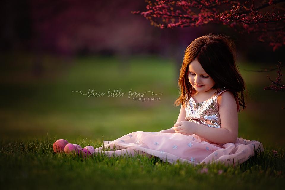 three_little_foxes_photography_columbia_missouri_child_photographer