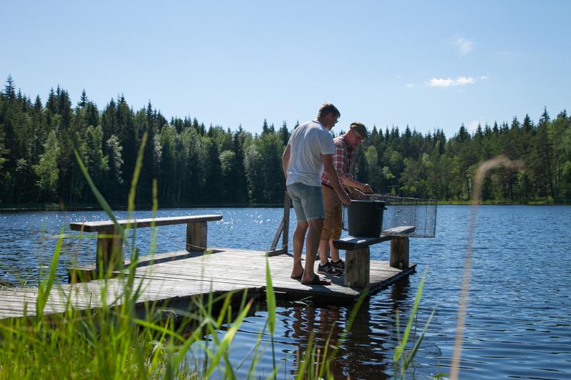 Kalaa nousee Råmossan omasta järvestä! Puuhastele, ilman aikataulua.