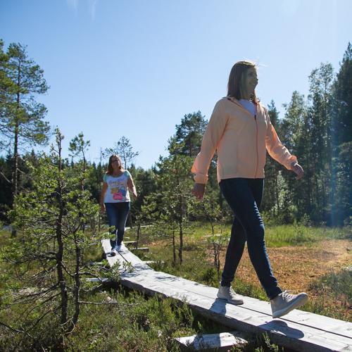 ….Luontopolku..Trekking in nature….