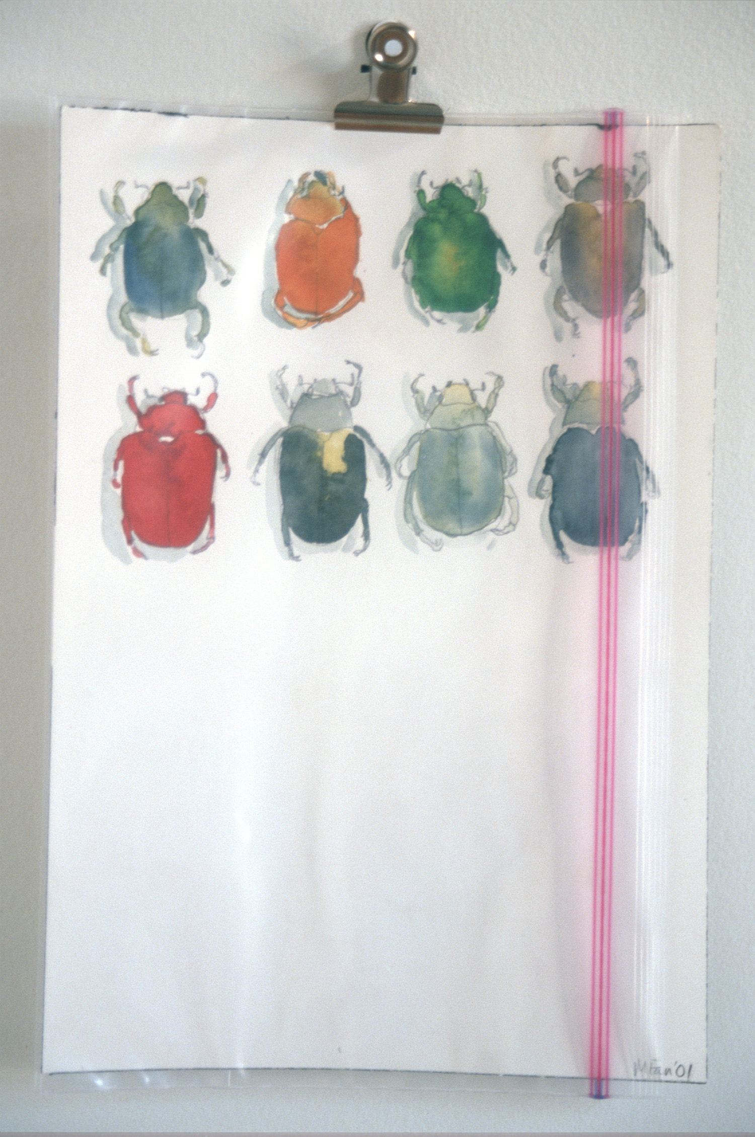 Collection: Scarabs