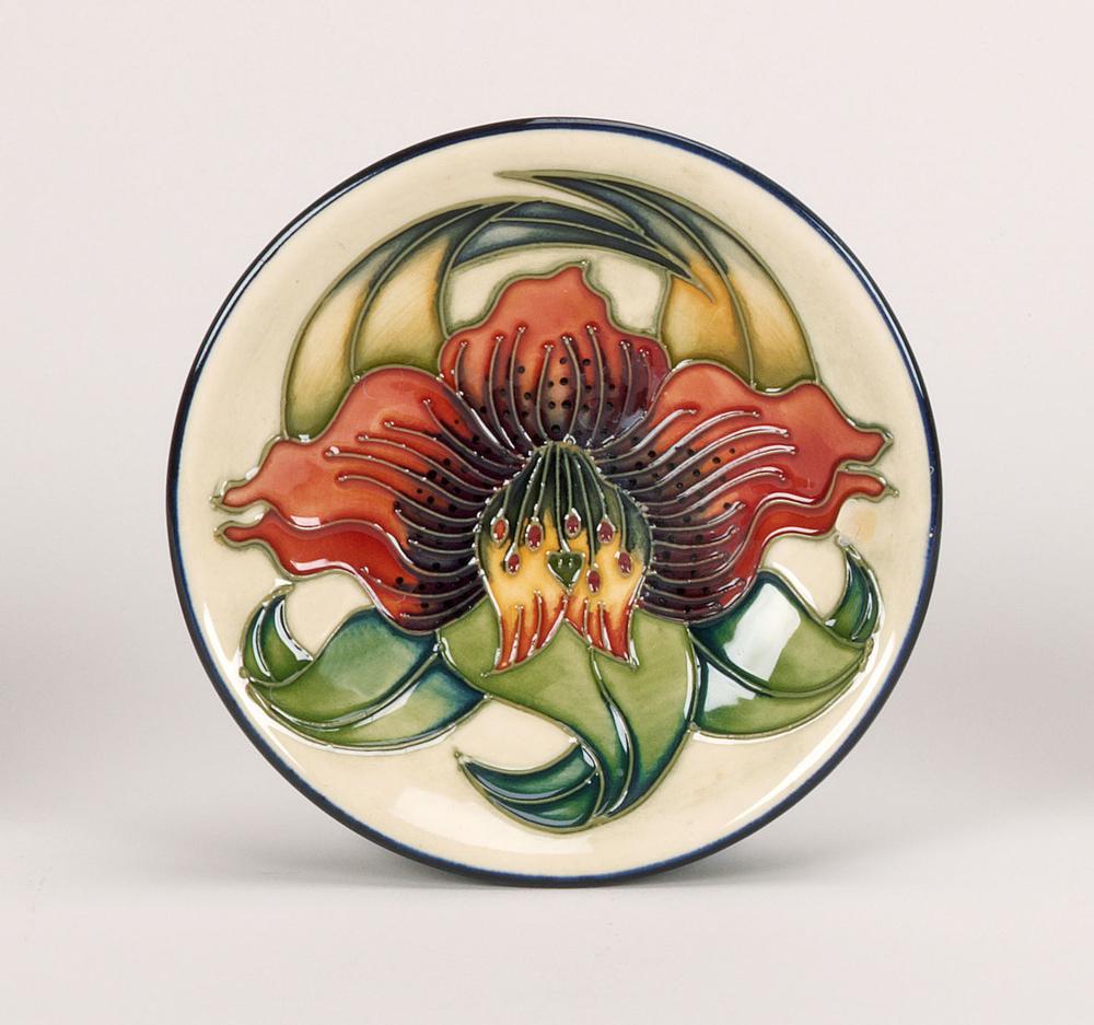 cornflower_collection_780-4.jpg
