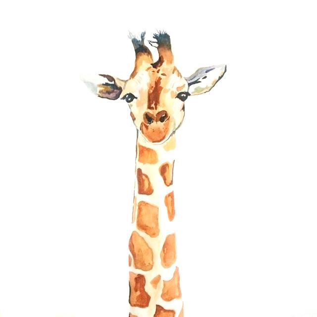 Giraffe, 20 x 30 , $250