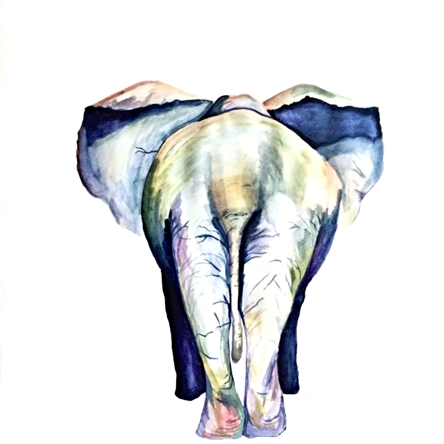 Elephant, 20x 30 '', $250