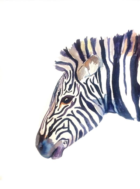 Zebra, 18 x 12'', $200