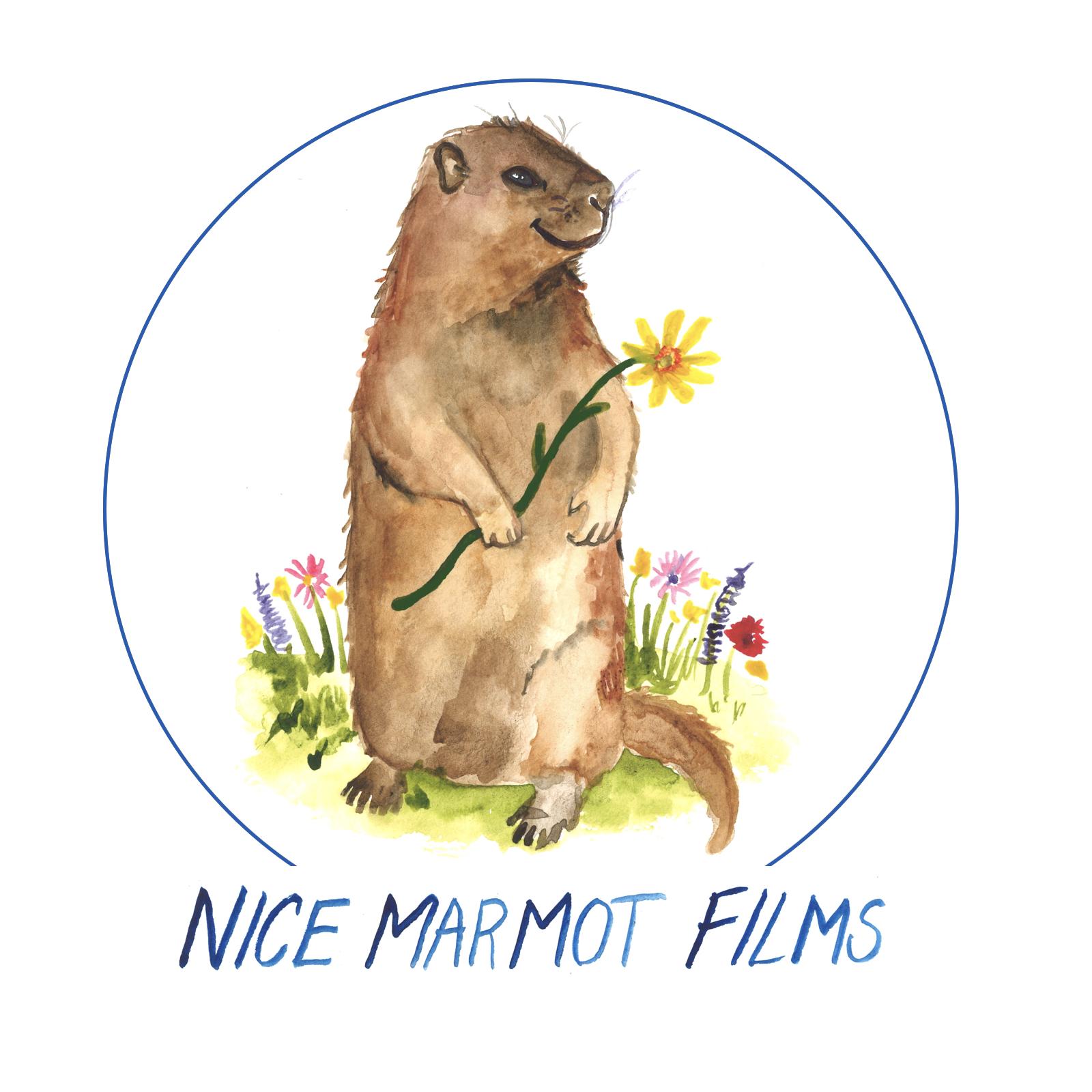 Nice Marmot Films Logo.009.jpeg