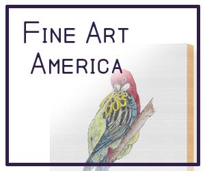 Fine Art America Shop - mjposton art