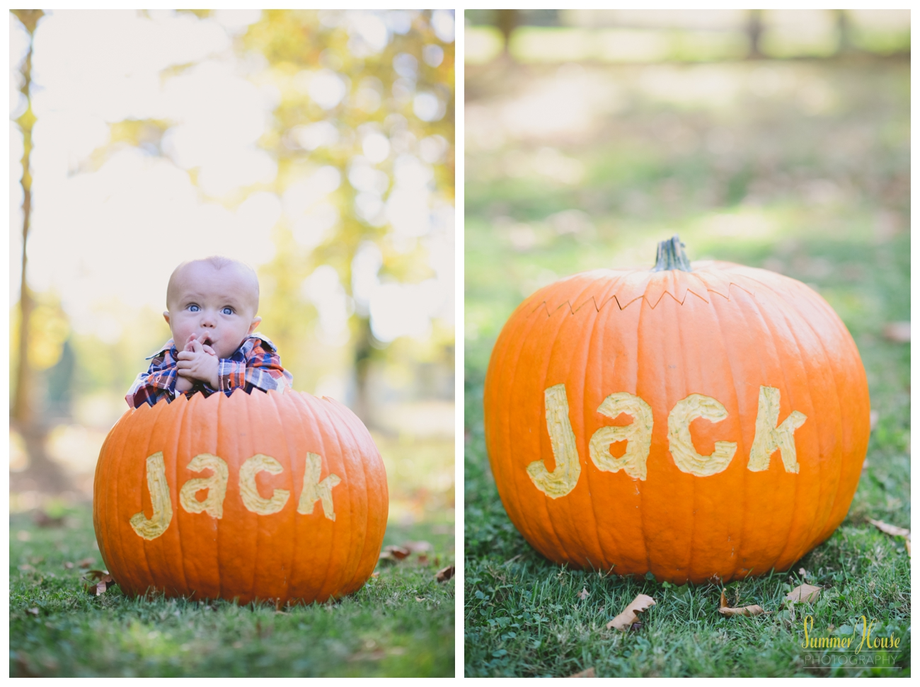 york pa family photographer fall